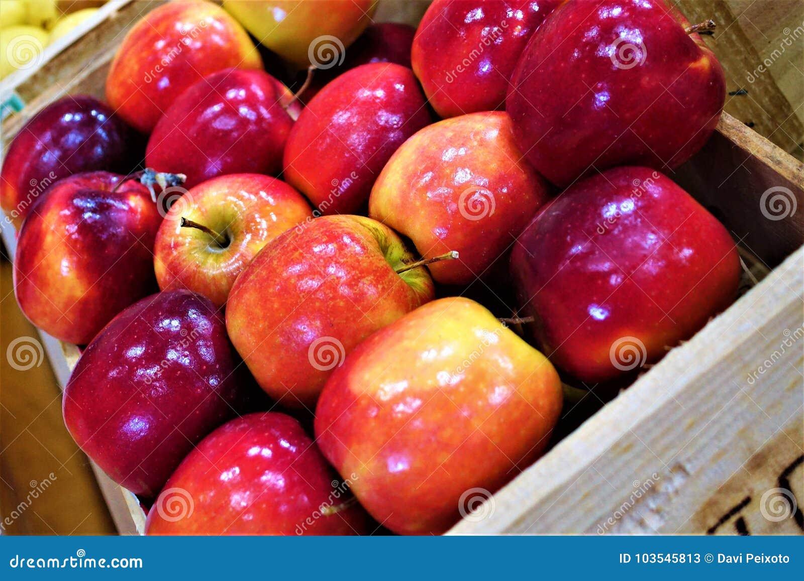 Ask av äpplen