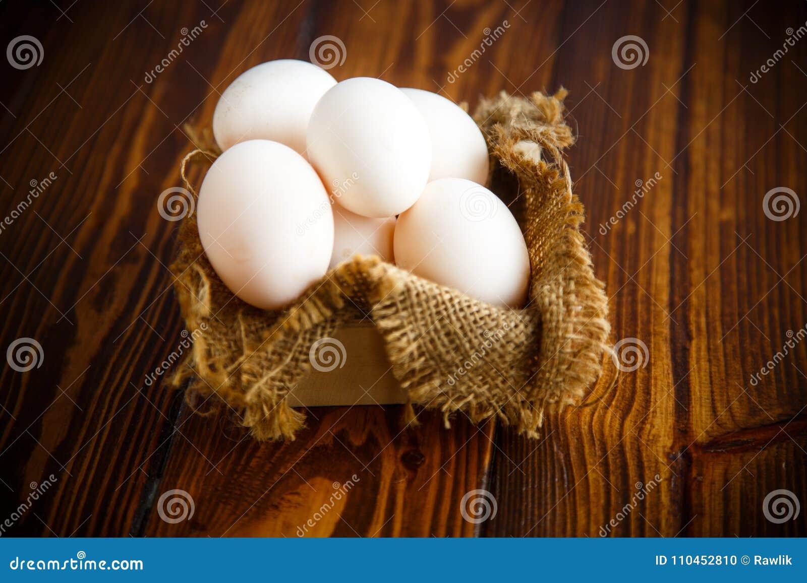 Ask mycket av säckväv med ägg