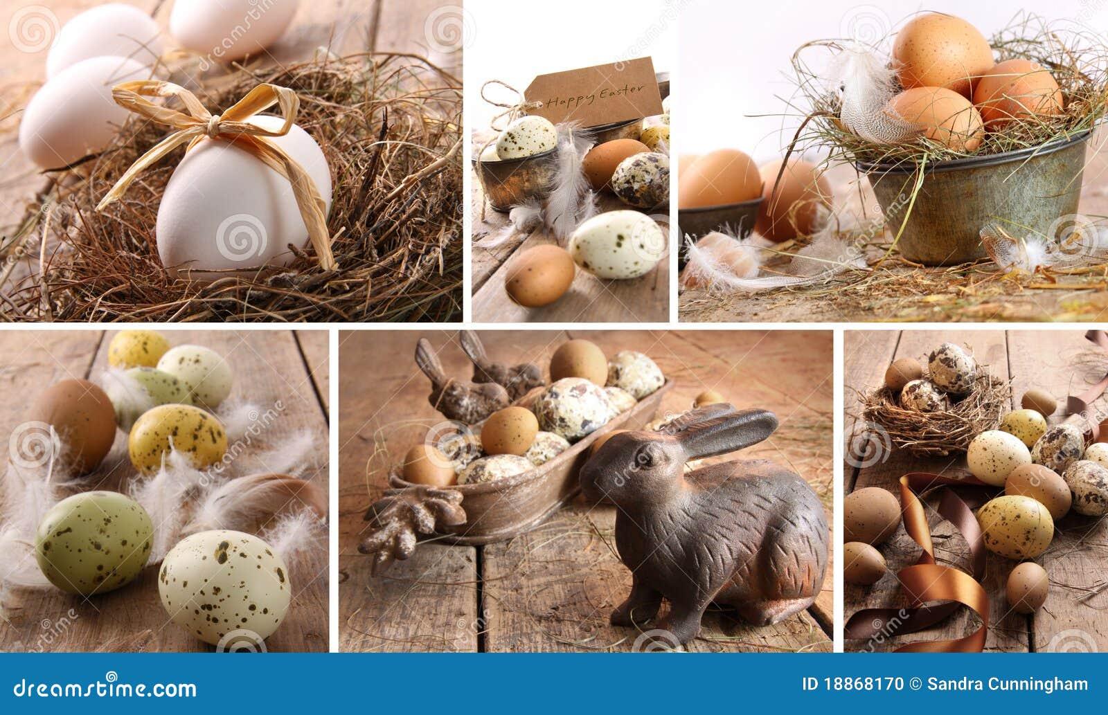 Asortowani kolażu Easter jajek wizerunki