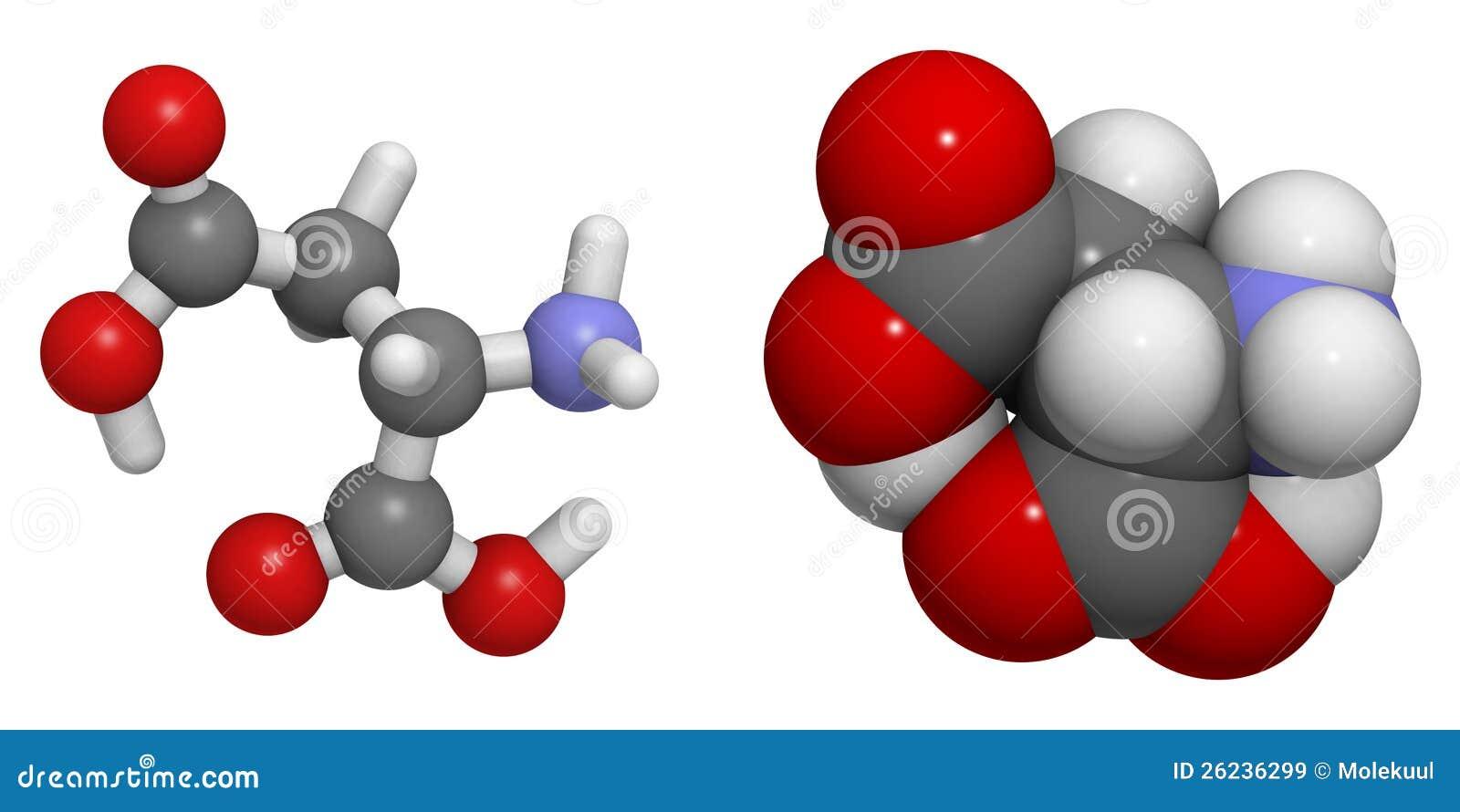 天门冬氨酸(asp, d)分子