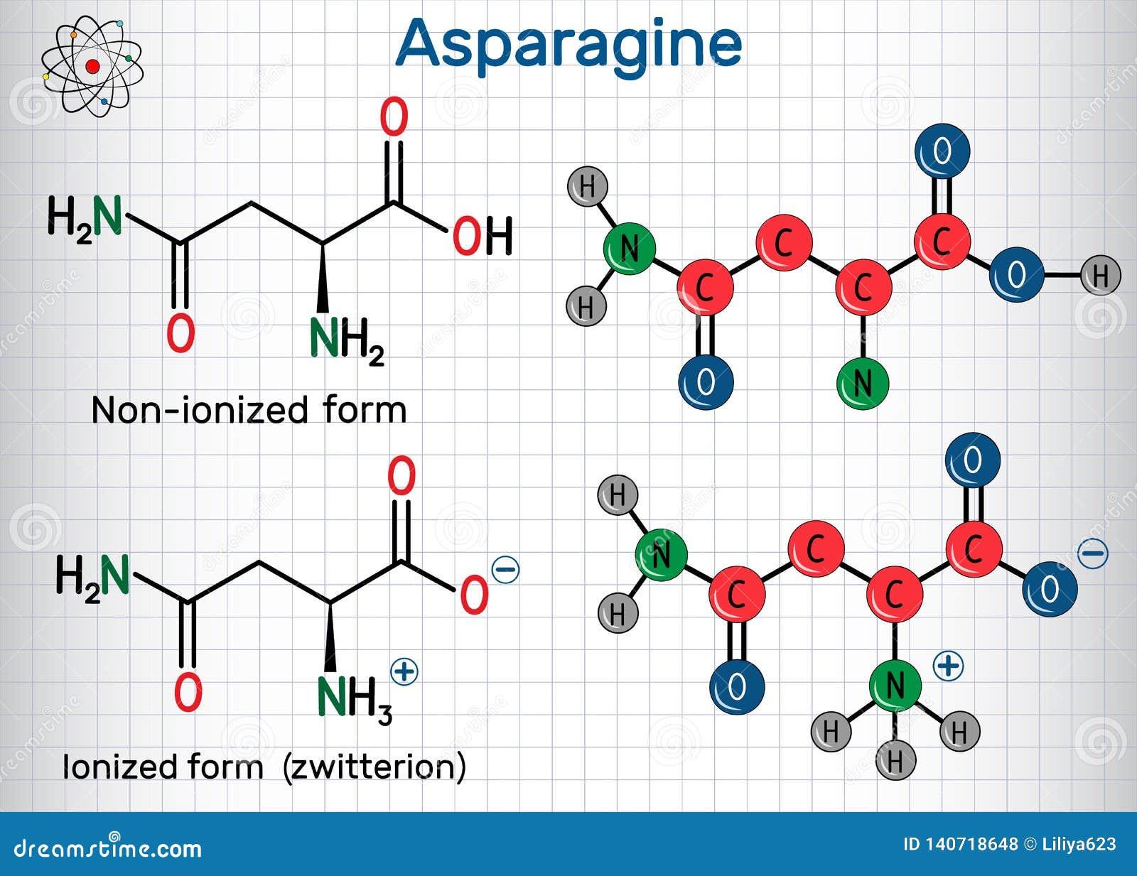 AsparagineL-asparagine, Asn, n-aminosyramolekyl Joniserade och icke-joniserade zwitterionformer strukturell kemisk formel