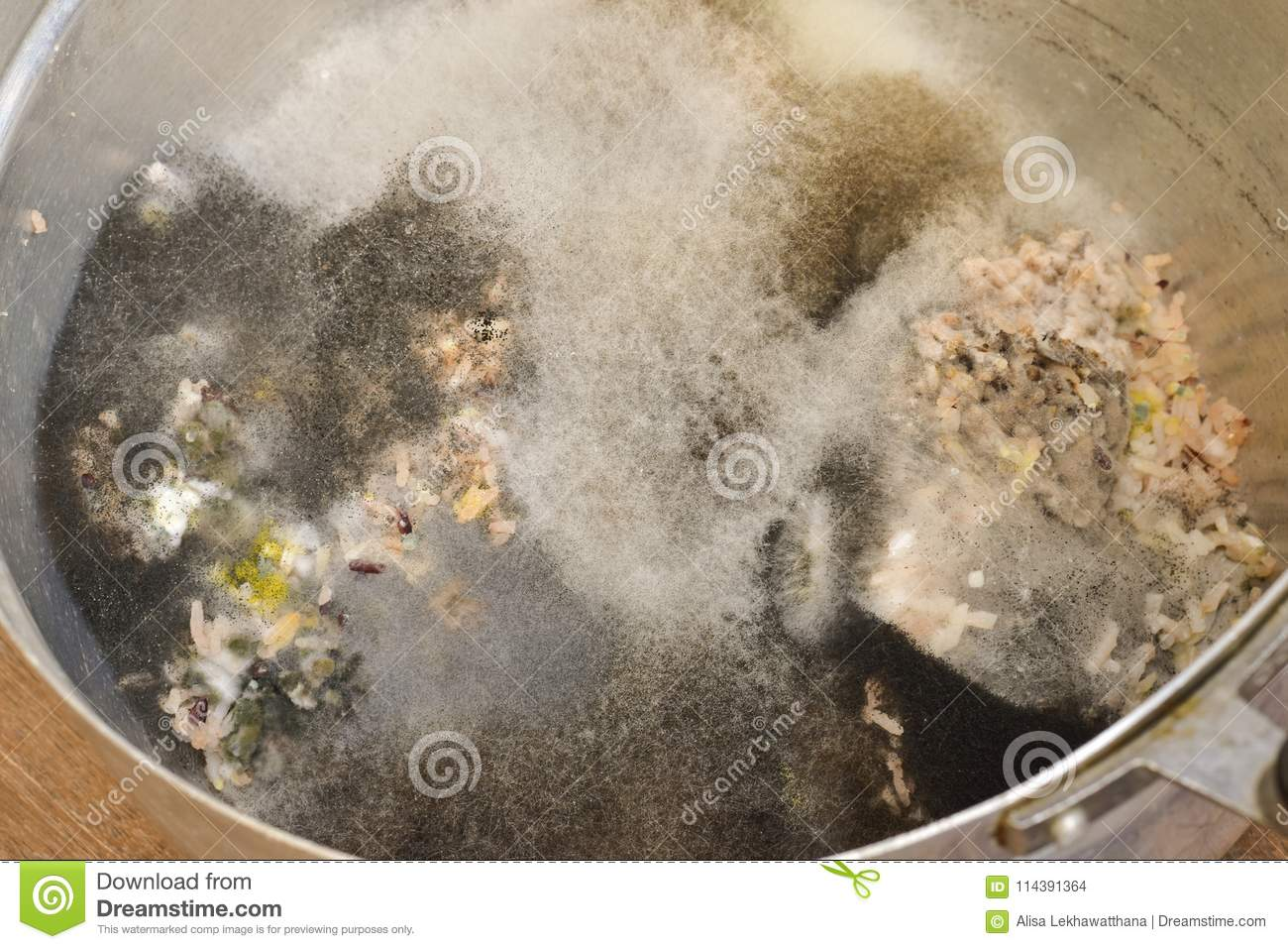 Aspergillus mold on food. Texture of toxic mold with black, whit