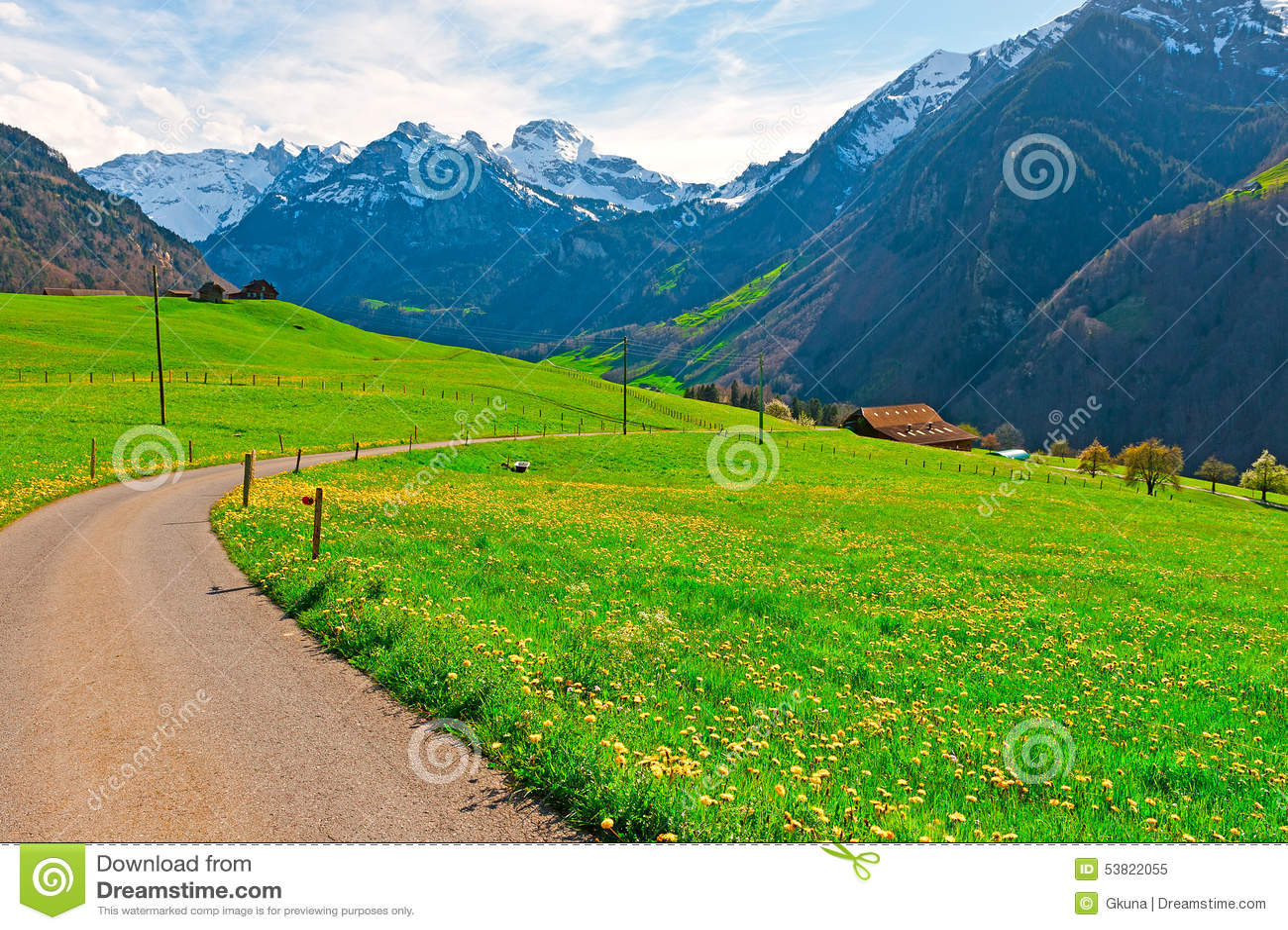 Asphalt Path