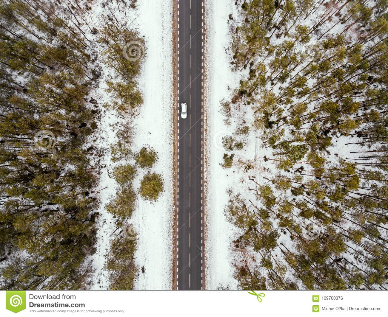 Forest road in winter view from above