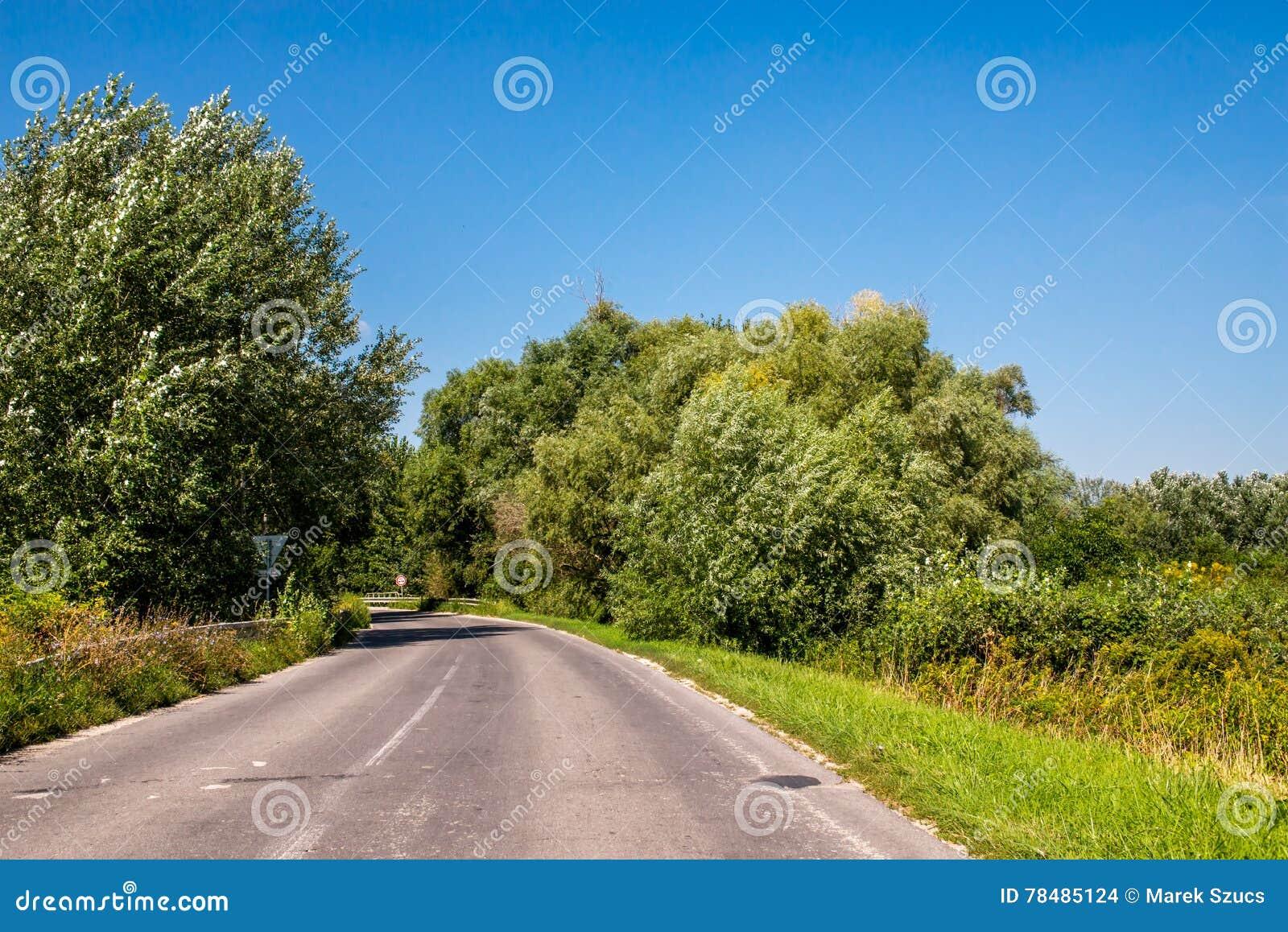 Asphalth buktade den tredje kvaliteten den slovakiska bygdvägen nära skogen, sommar