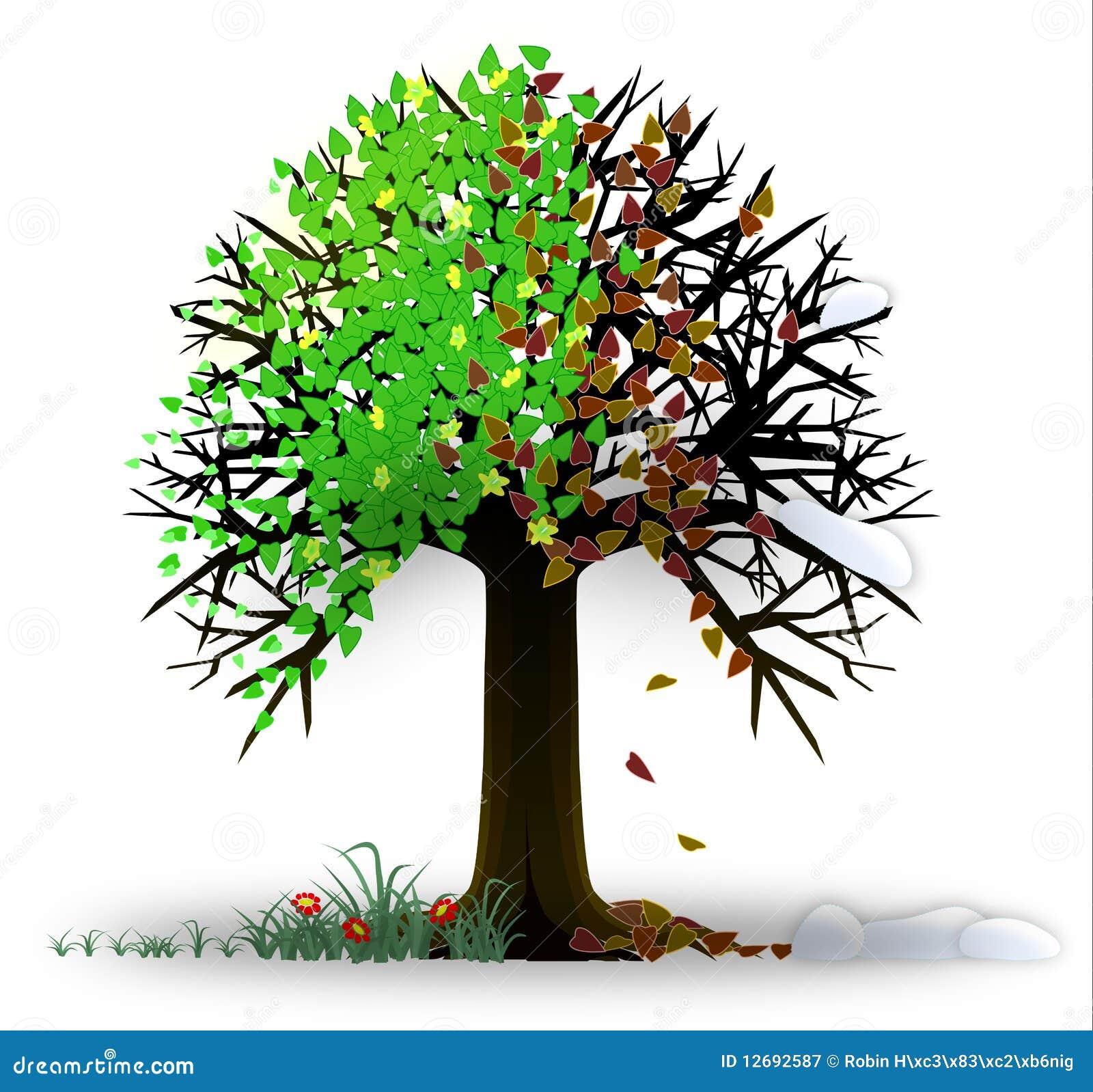Assaisonne l arbre