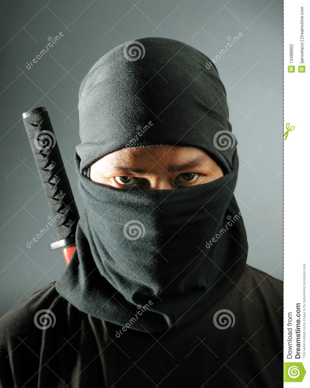 Assassin de Ninja
