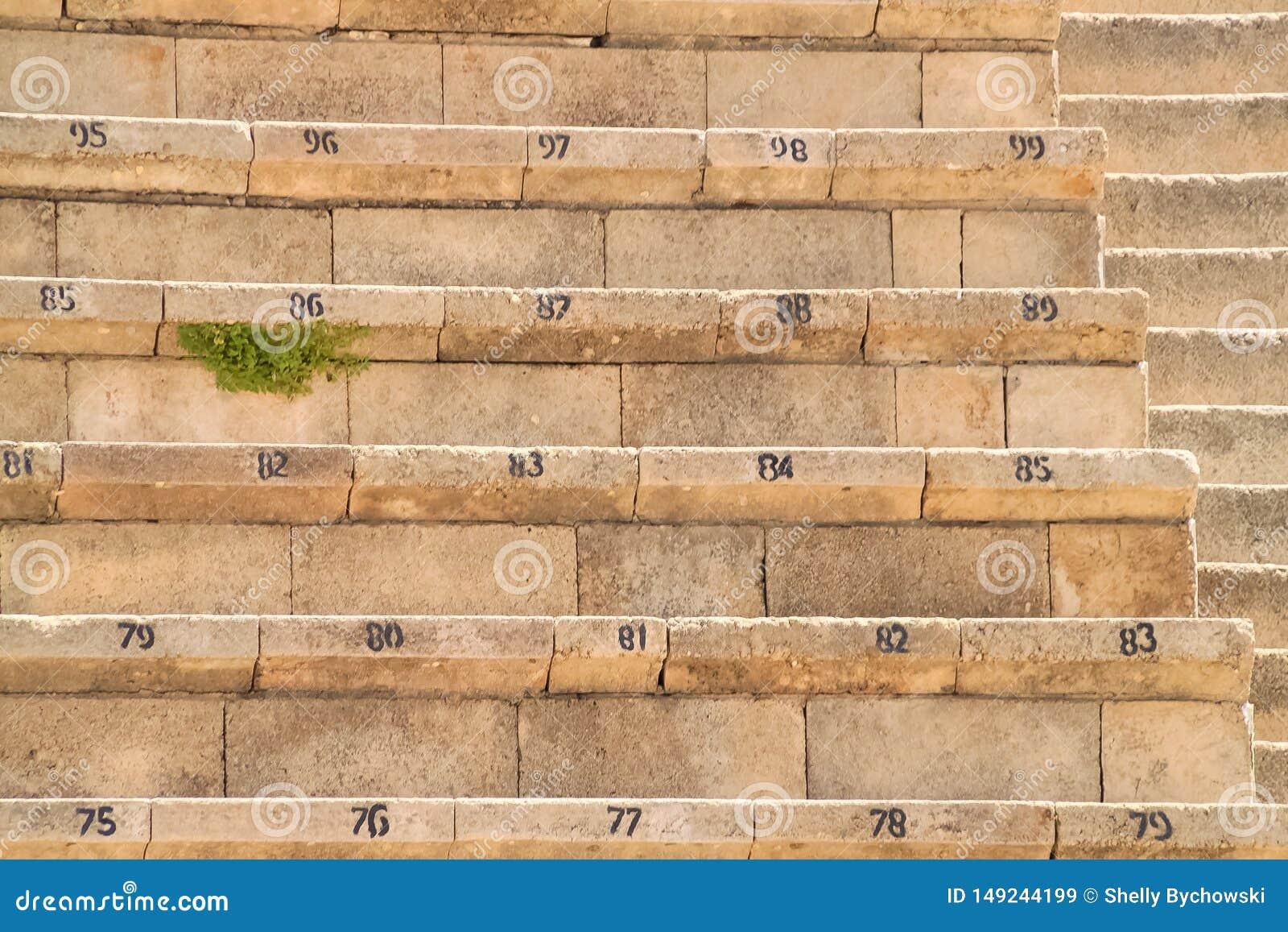 Assentos numerados no teatro reconstru?do da fortaleza de Herod em Caesarea