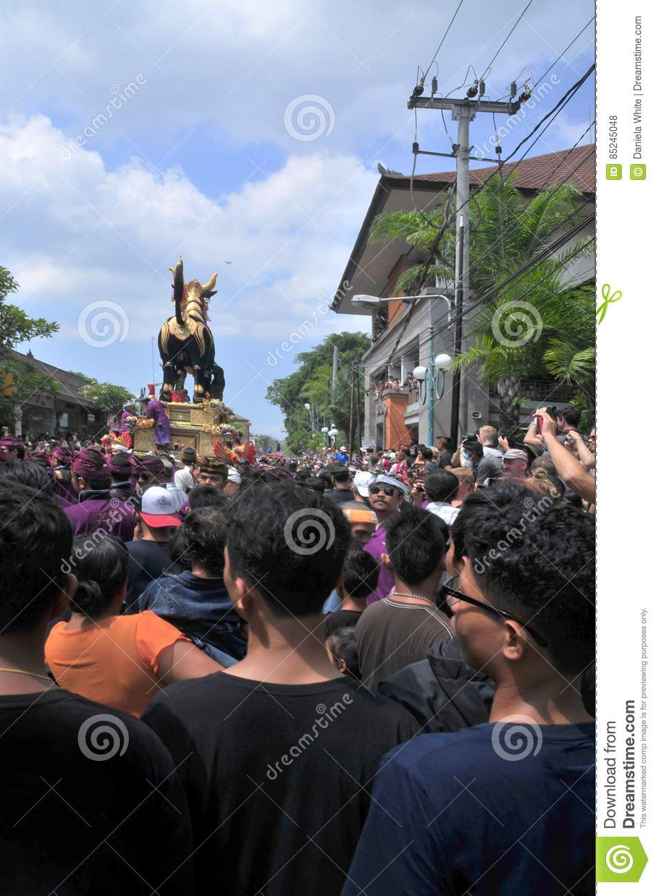 `assignment files` Royal Cremation Ceremony , Bali, Indonesia , Asi