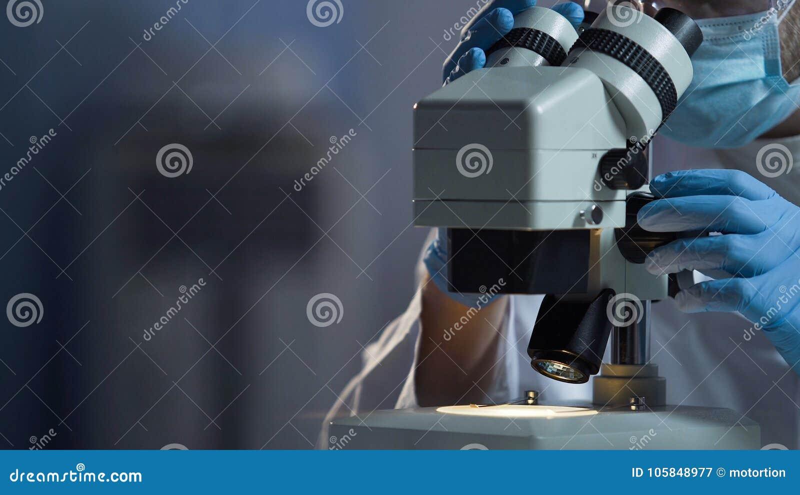 Assistente de laboratório que pesquisa as bactérias recentemente produzidas sob o microscópio, ciência