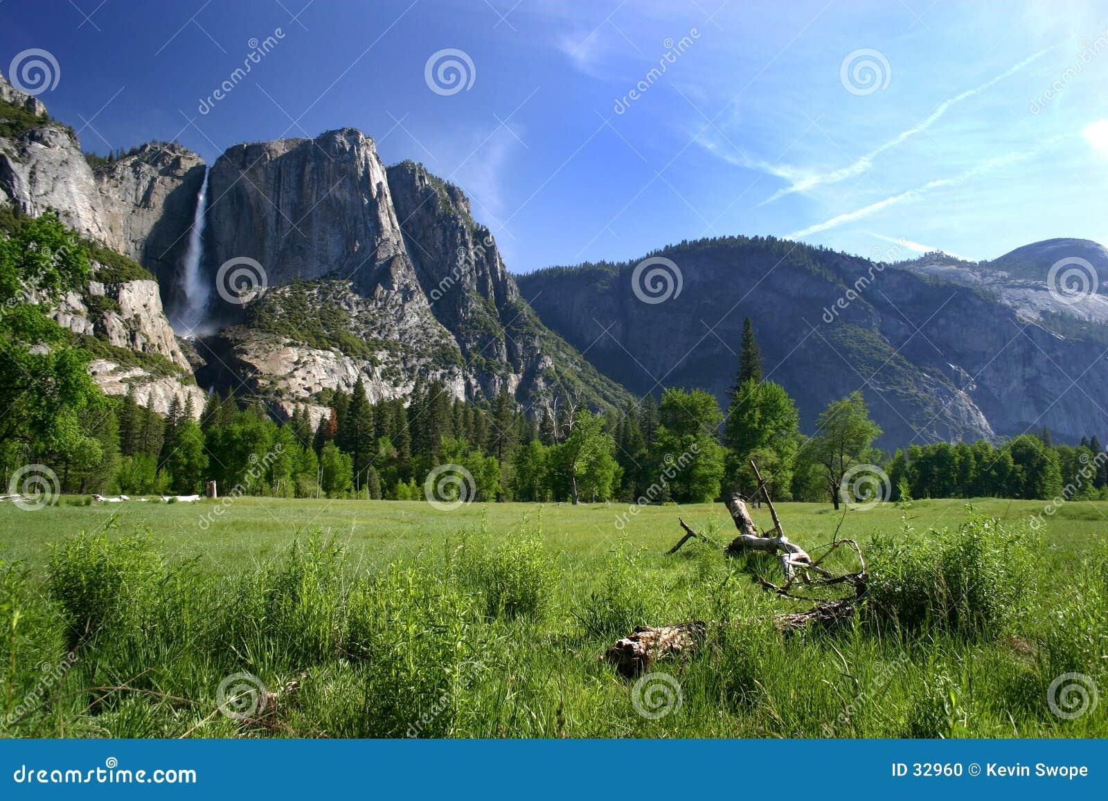 Assoalho do vale de Yosemite