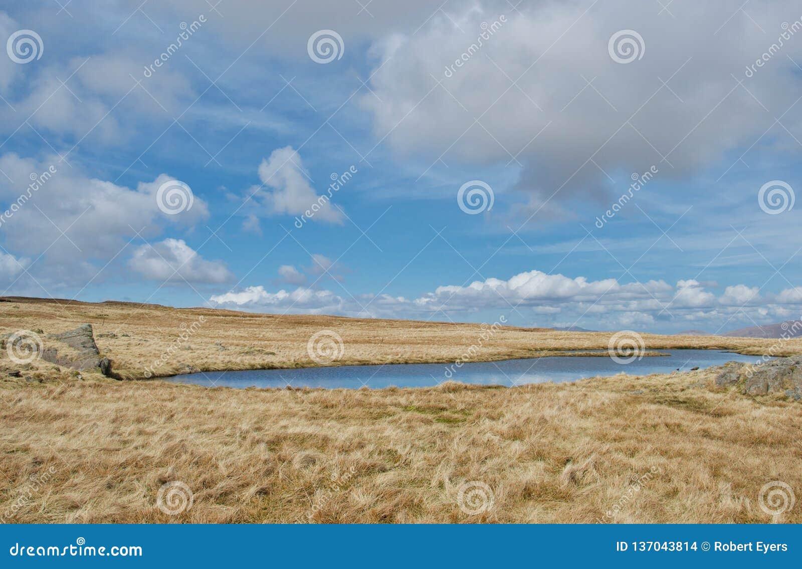 A associação azul vívida de tarn da montanha sobre a caiu no distrito Cumbria do lago, Reino Unido