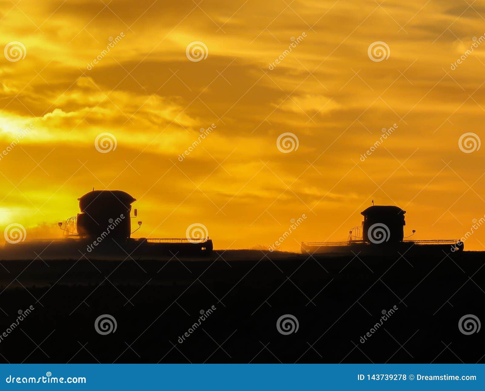 Associazioni nel tramonto