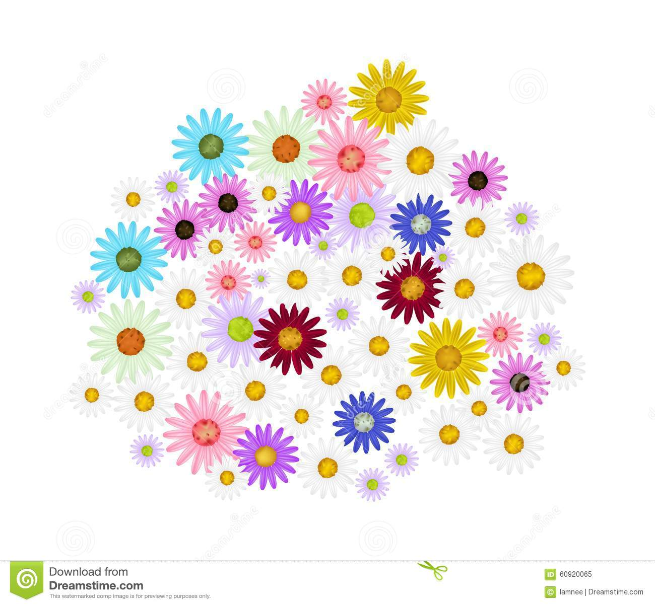 Assorted Daisy Flowers On A White Background Stock Illustration