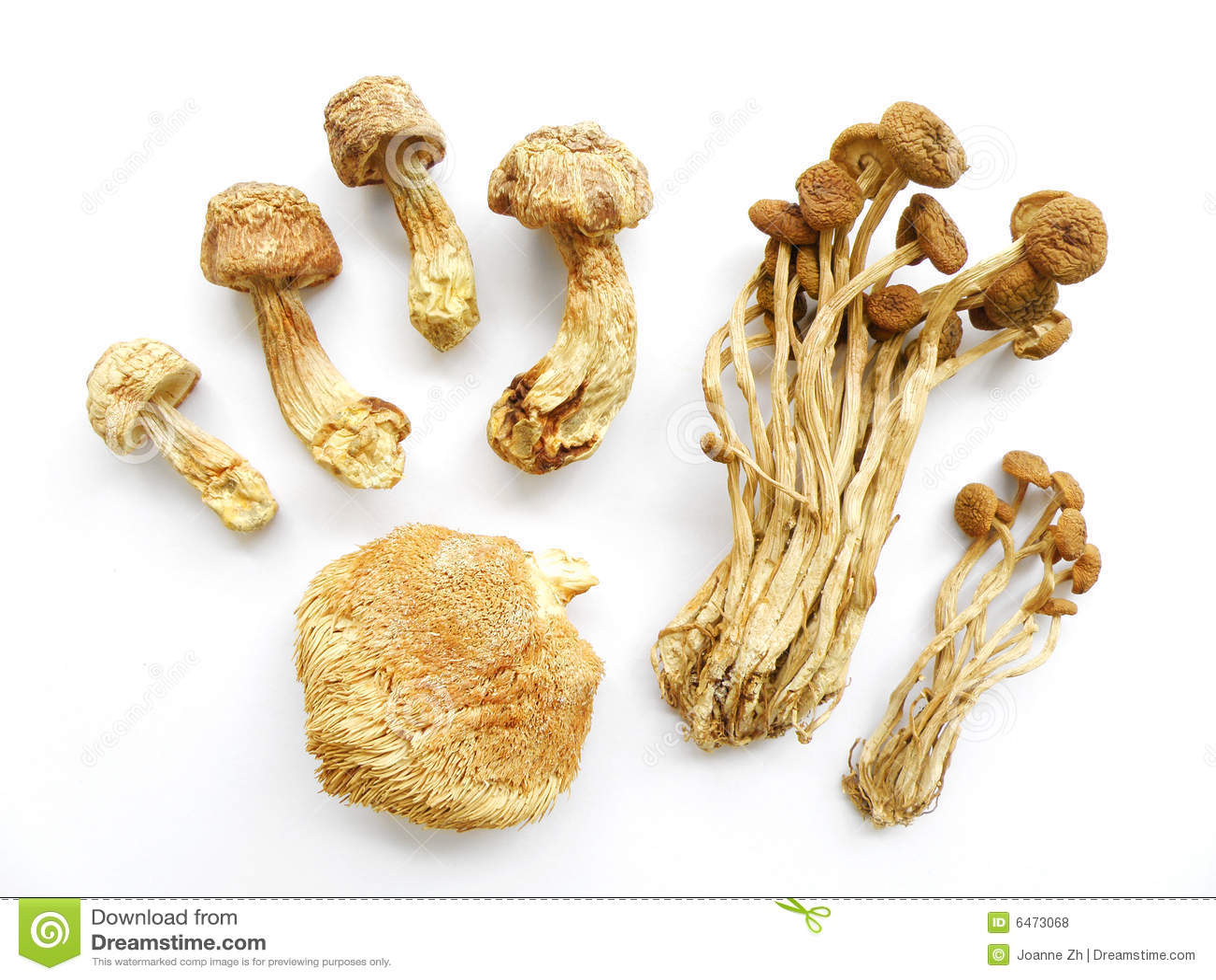 Assorted dried mushrooms