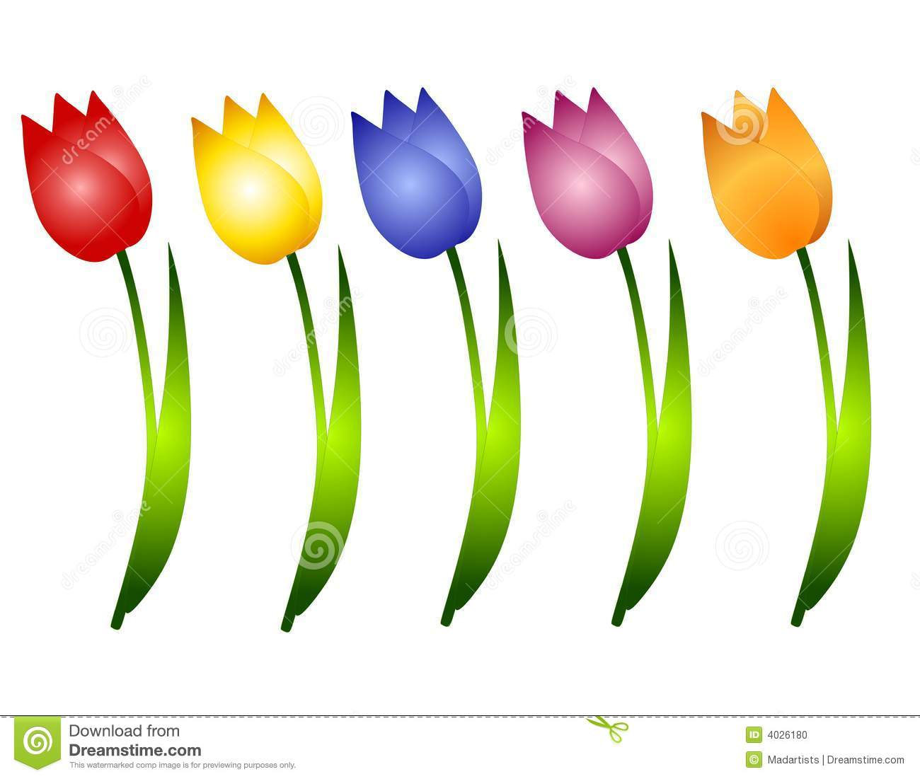 Assorted Spring Tulips Flowers Clip Art Stock Photo - Image: 4026180