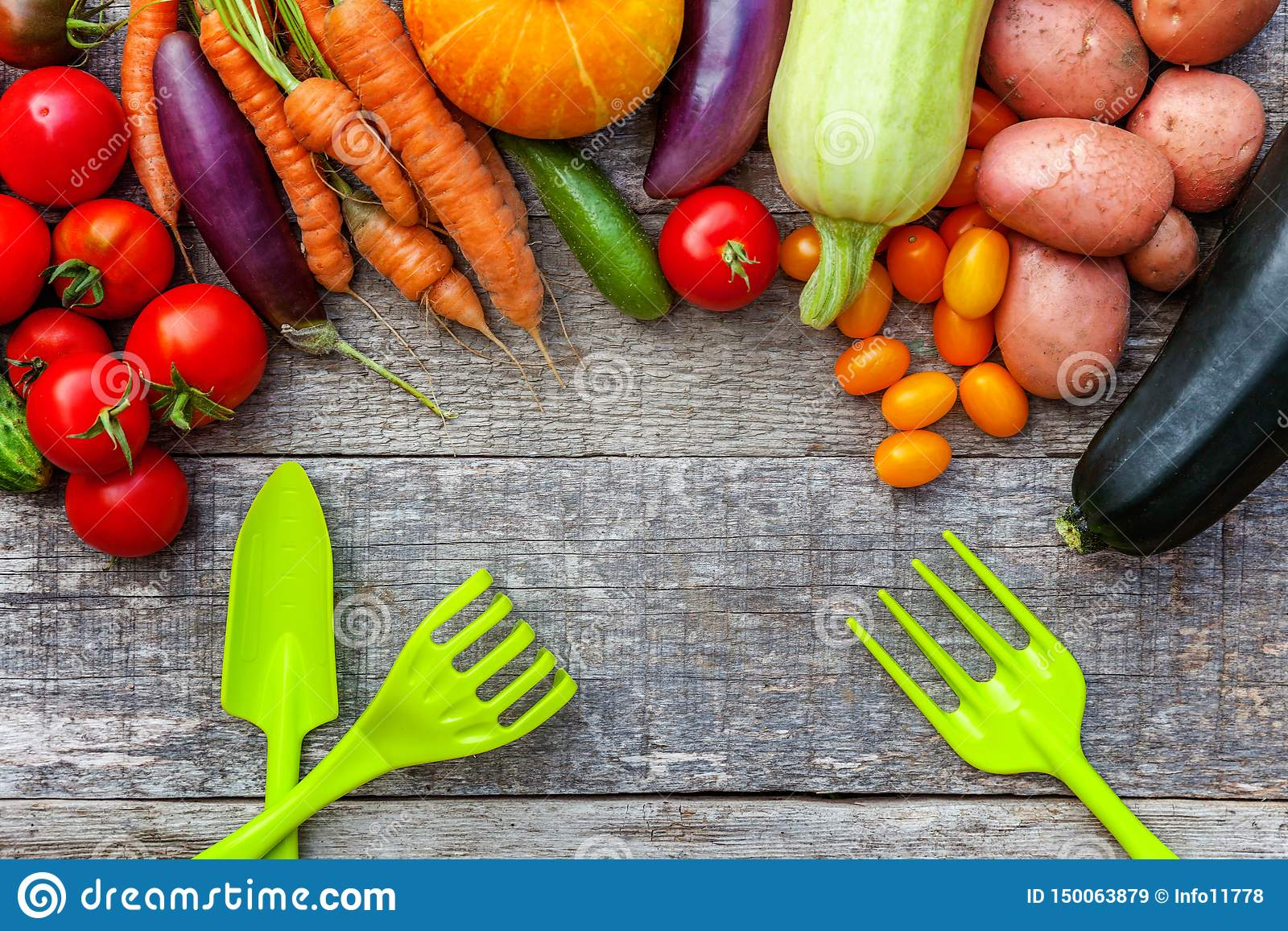 Assortiments verschillende verse organische groenten en het tuinieren hulpmiddelen op de stijl houten achtergrond van het land Lo