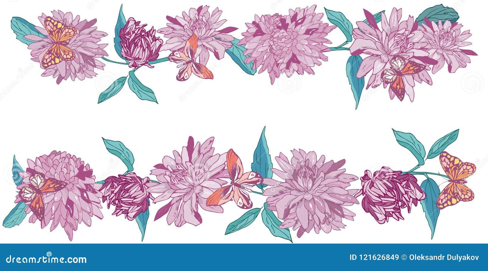 Aster with butterflies daisy flower border vector illustration aster with butterflies daisy flower border vector illustration izmirmasajfo