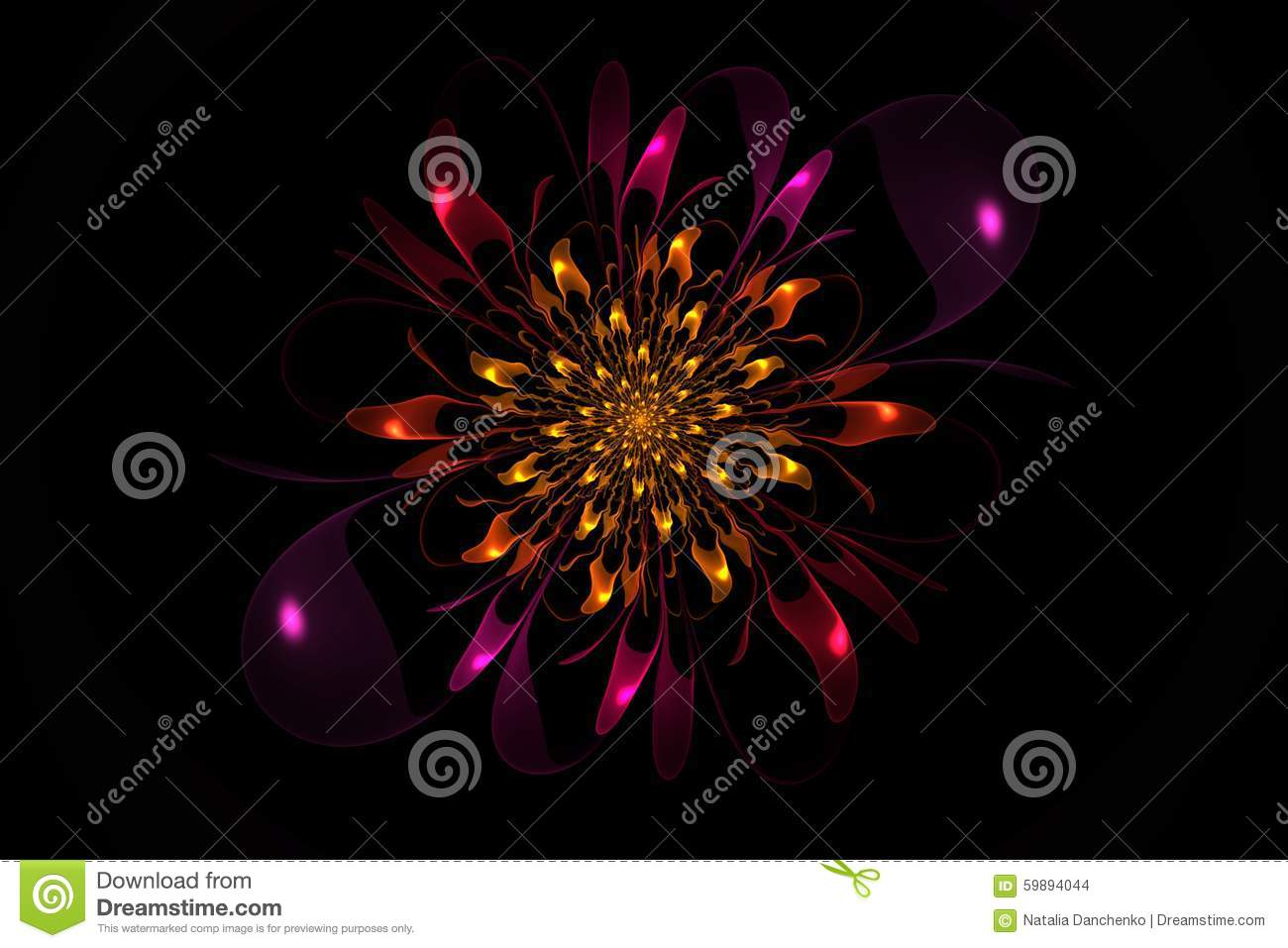 Aster. Created in Apophysis