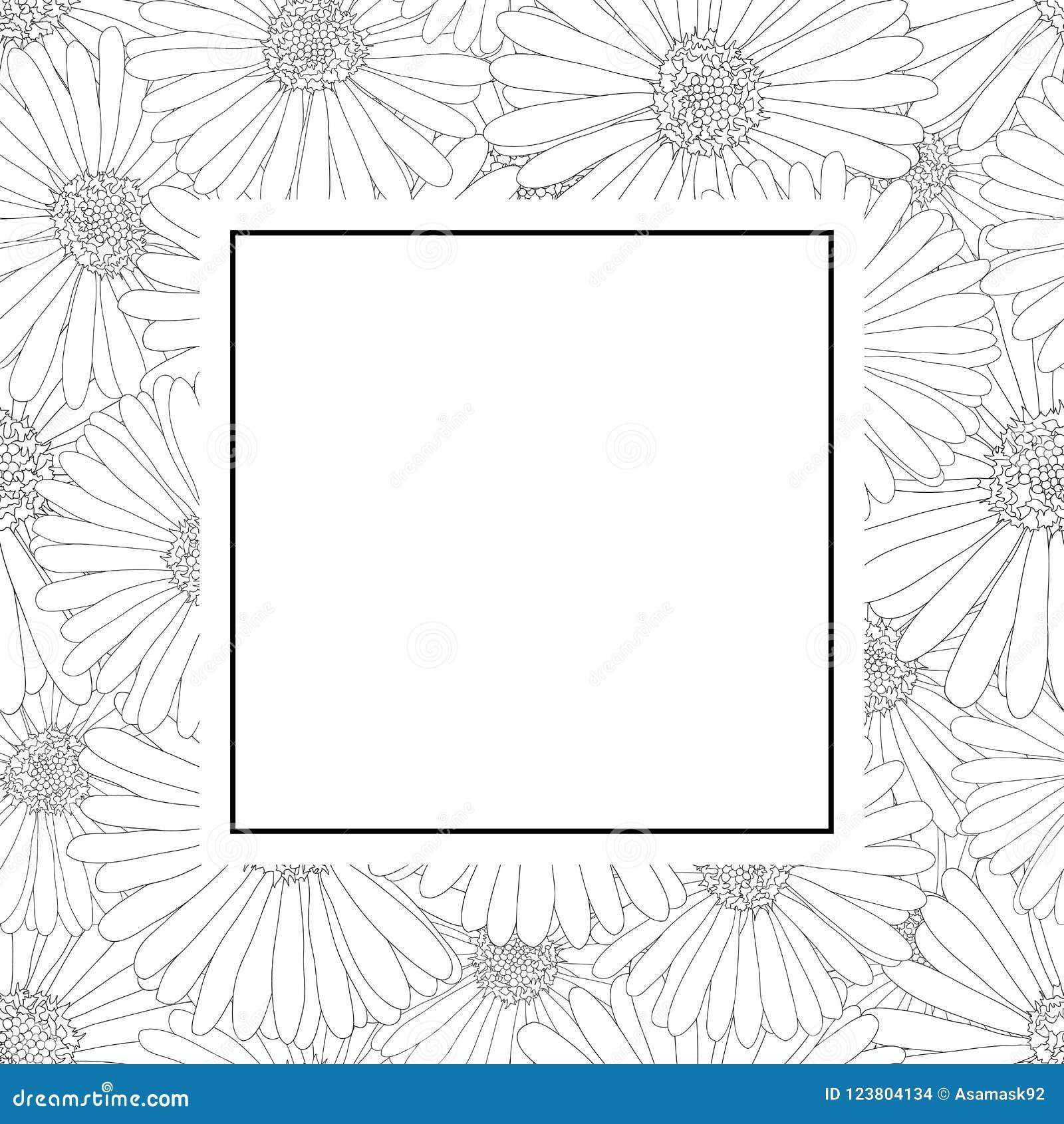 Aster Daisy Flower Outline Banner Card Border Vector Illustration