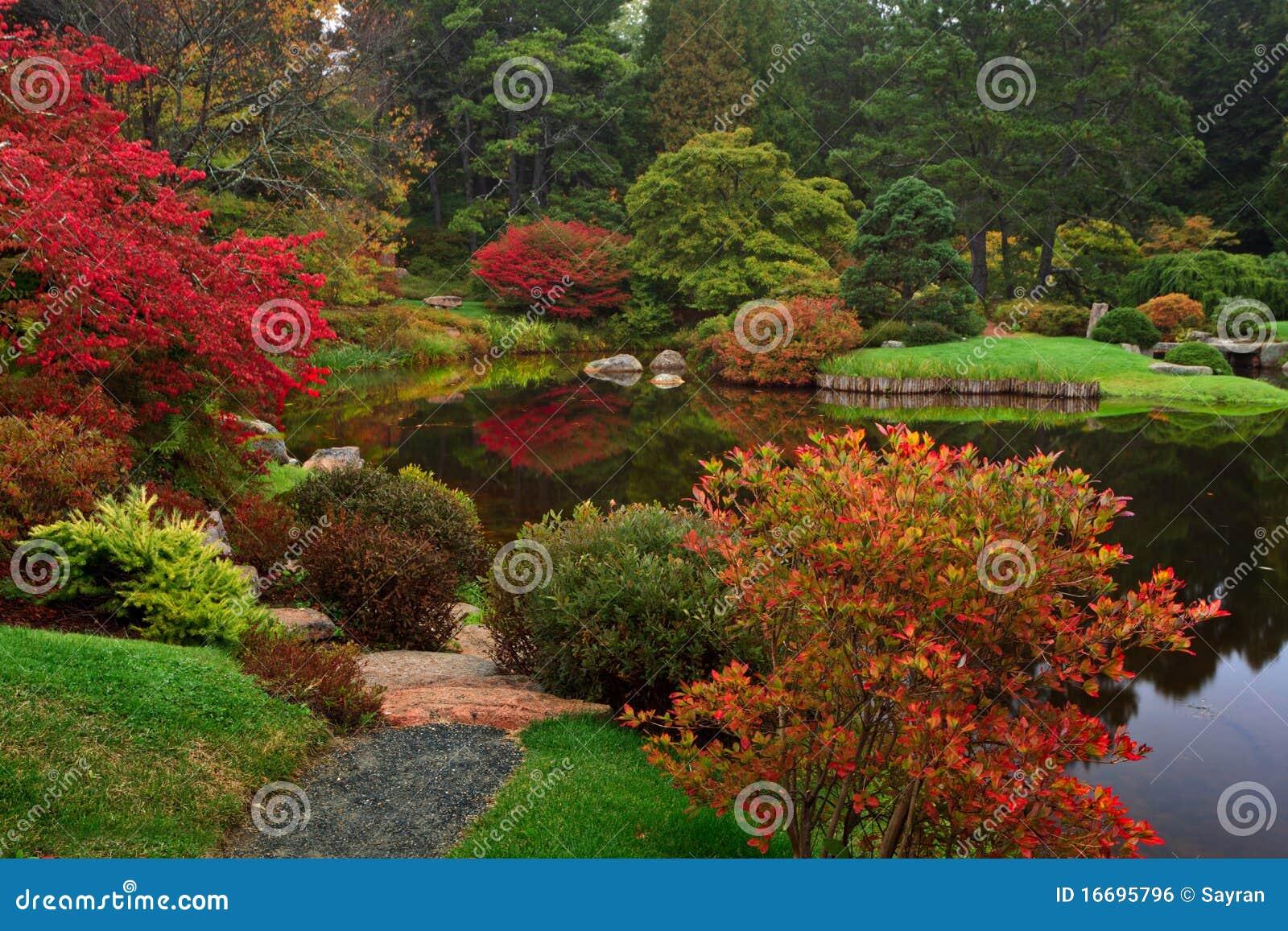 Asticou Azalea Garden stock photo. Image of hole, colorful - 16695796