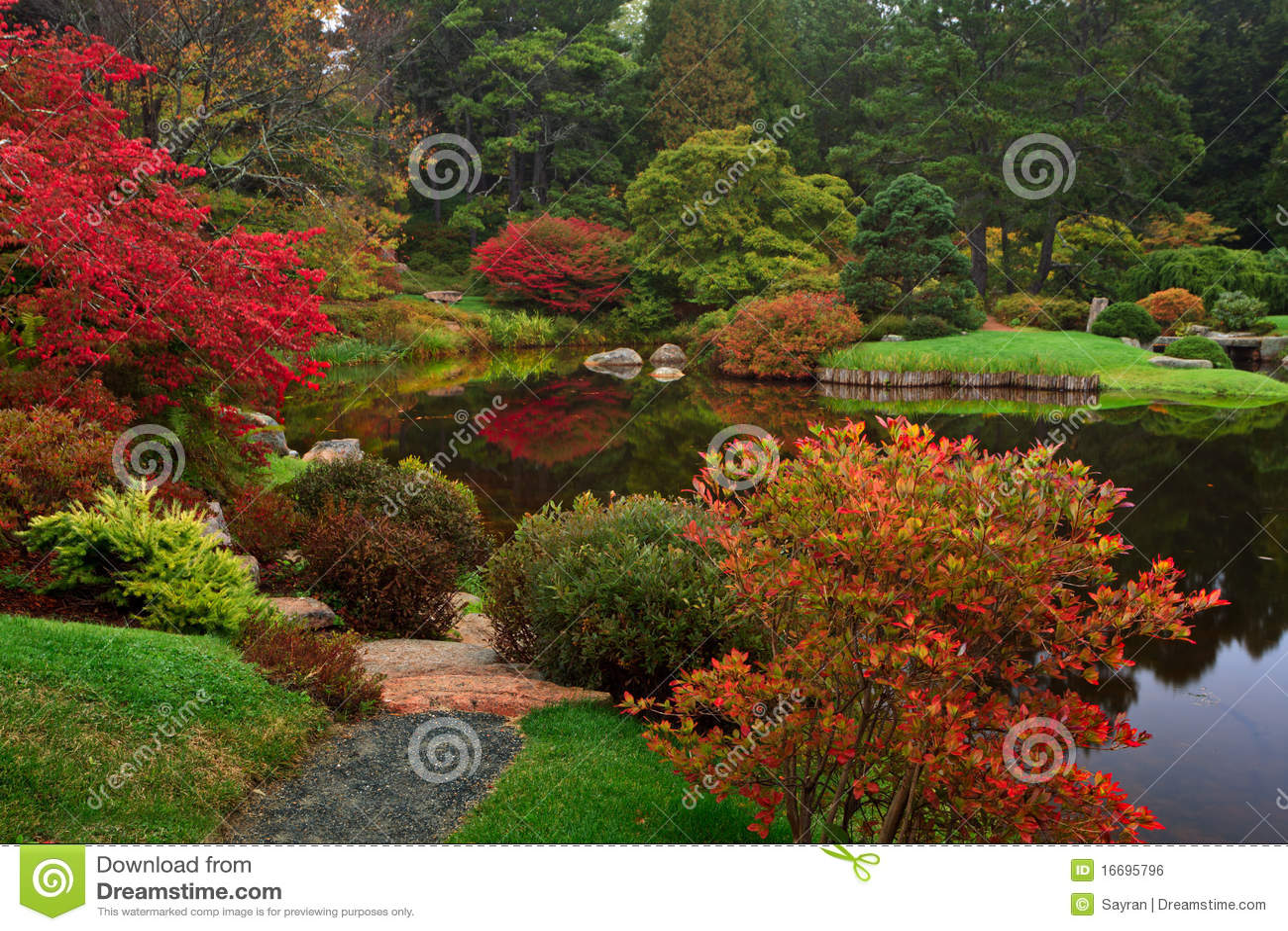 Asticou azalii ogród