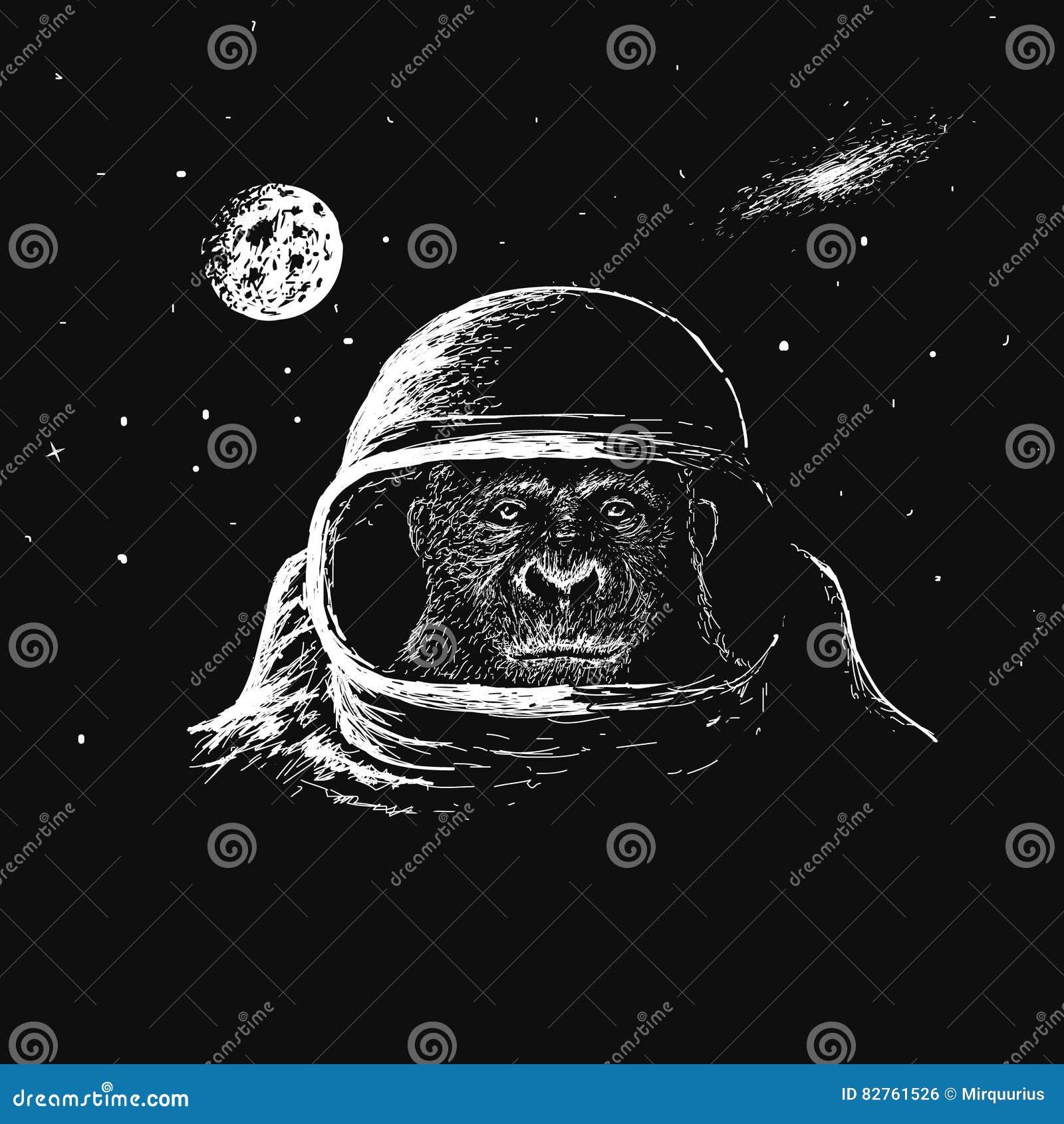 Astronauta della scimmia nello spazio cosmico