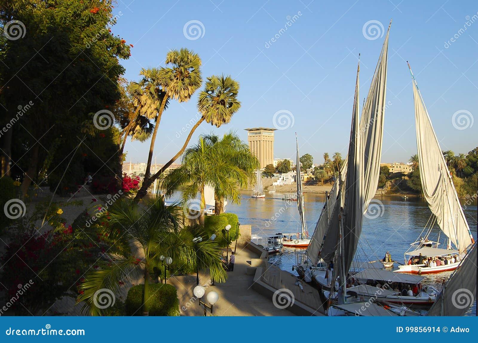 Aswan botanisk trädgård - Egypten
