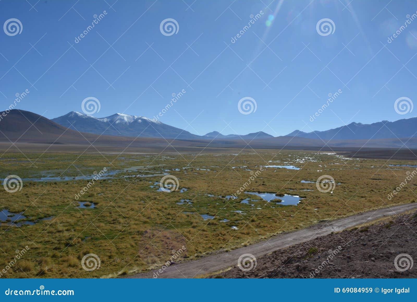 Atacamawoestijn - geiser