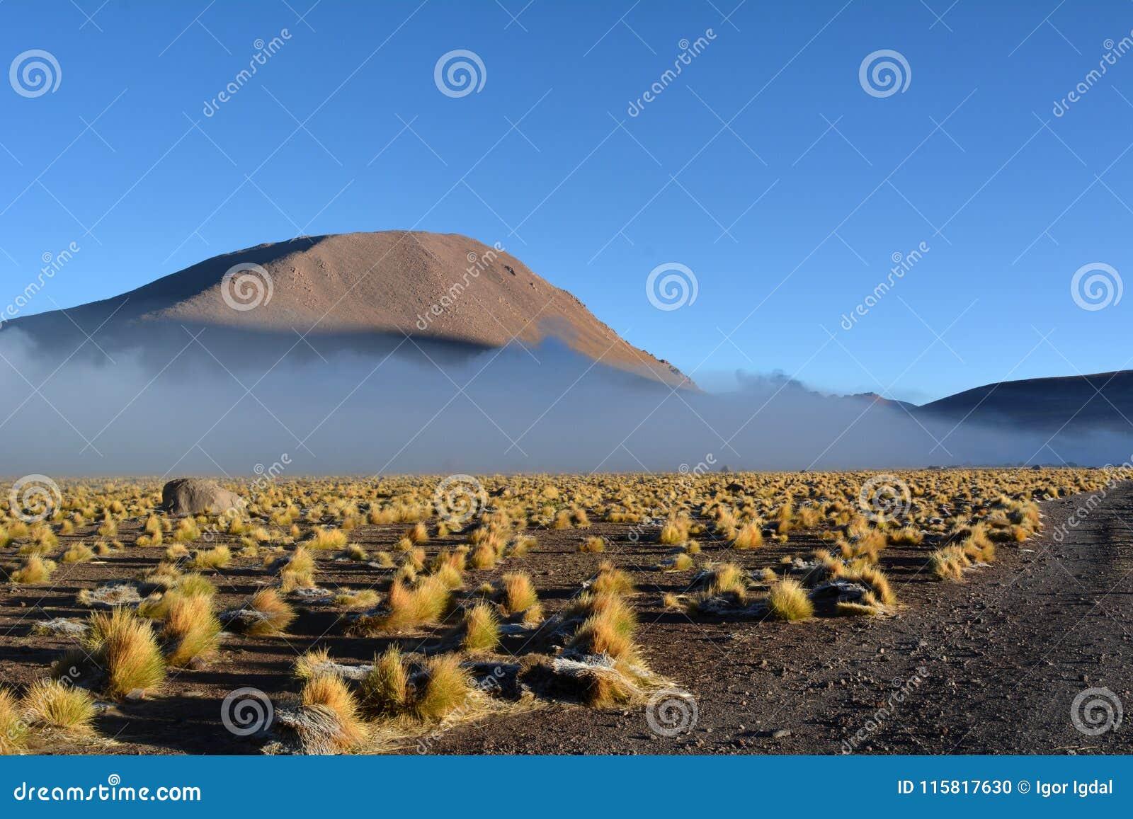 Atacamawoestijn - geiser in Gr Tatio