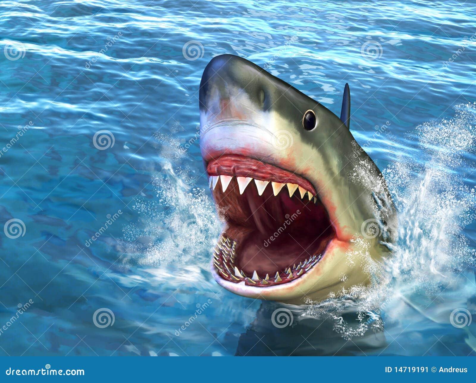 Ataque do tubarão