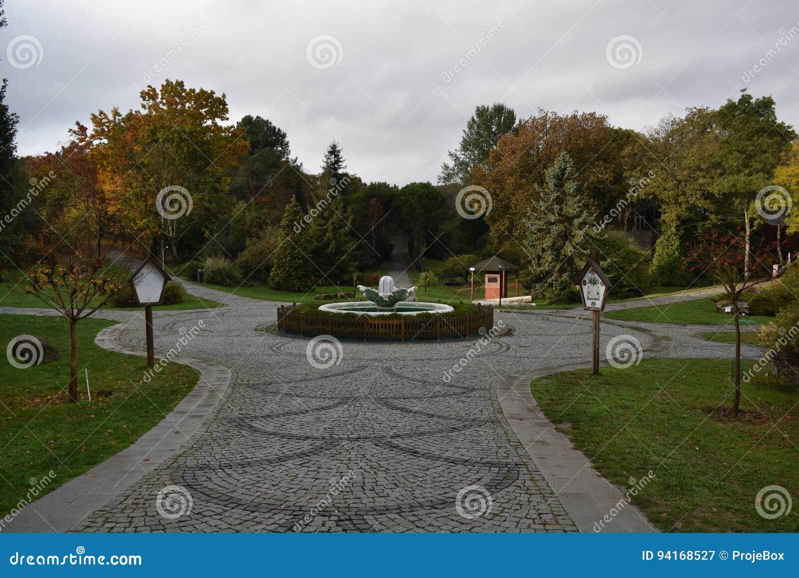 Ataturk Arboretumu Istanbul Stock Image - Image of hands