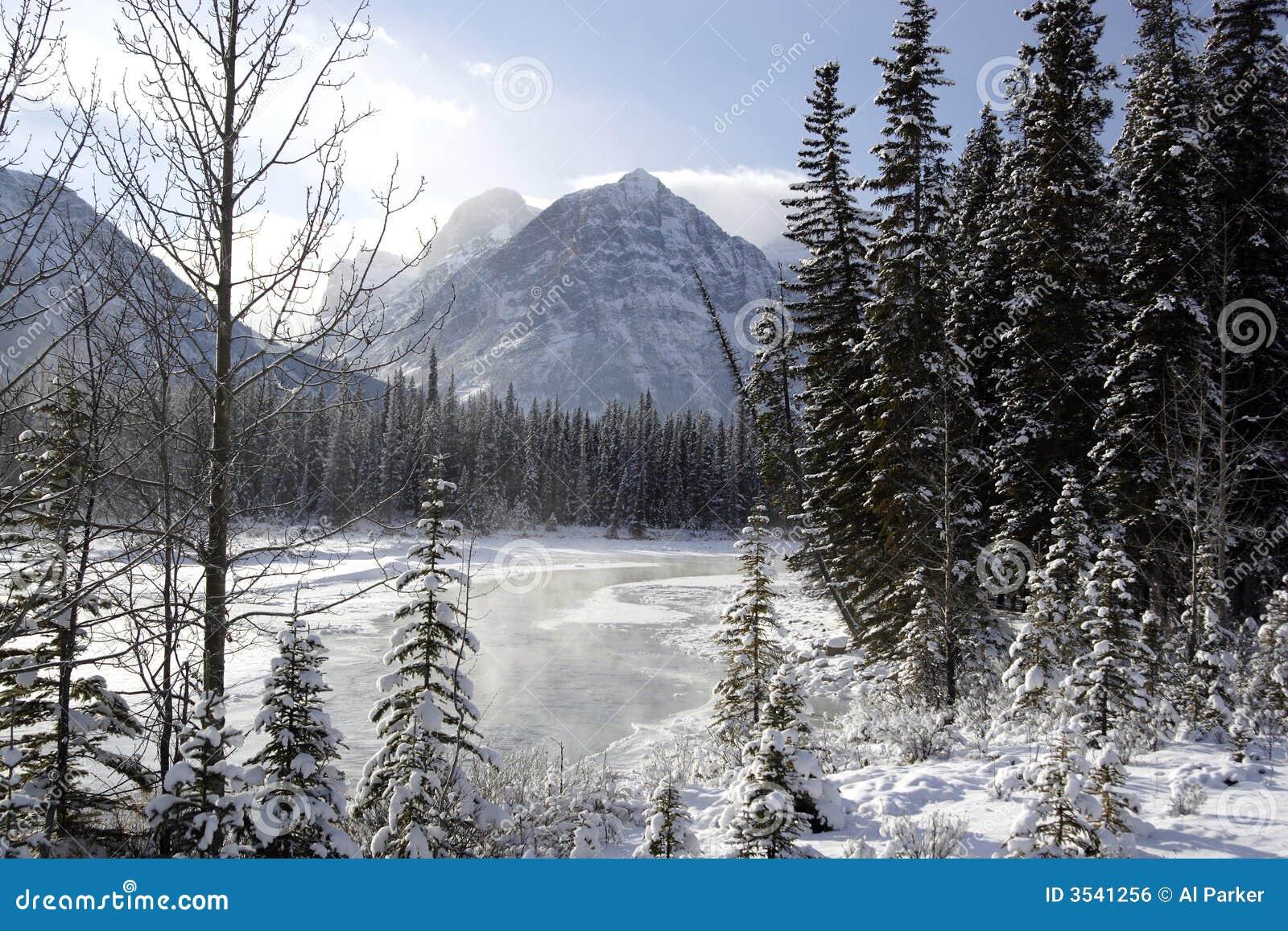 Athabascaflod