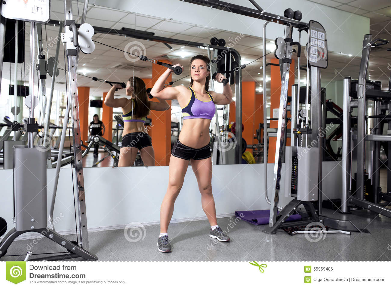 Athletic Girl Engaged In The Gym Stock Photo - Image of