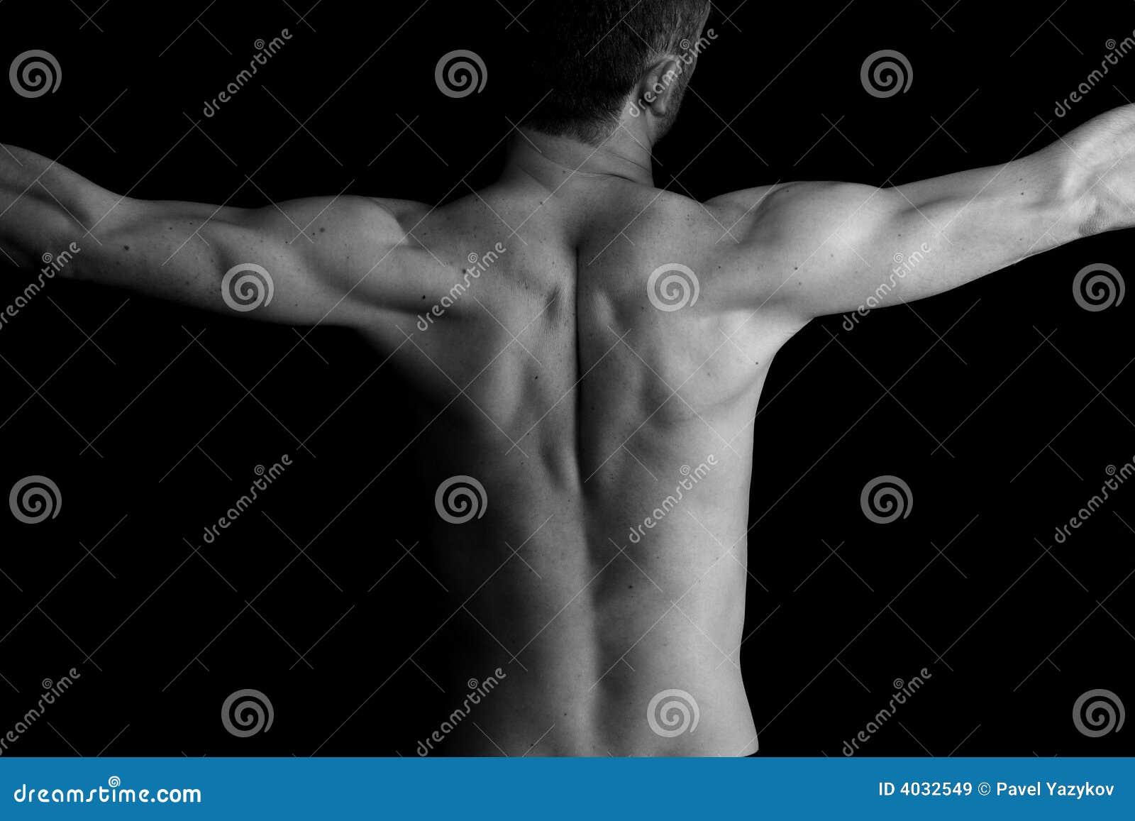 Athletic man. Torso. Black and white