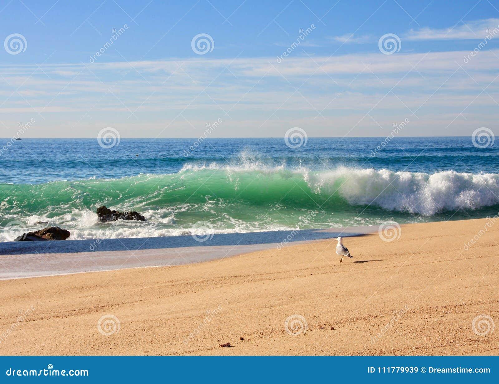 Atlantic ocean coast.