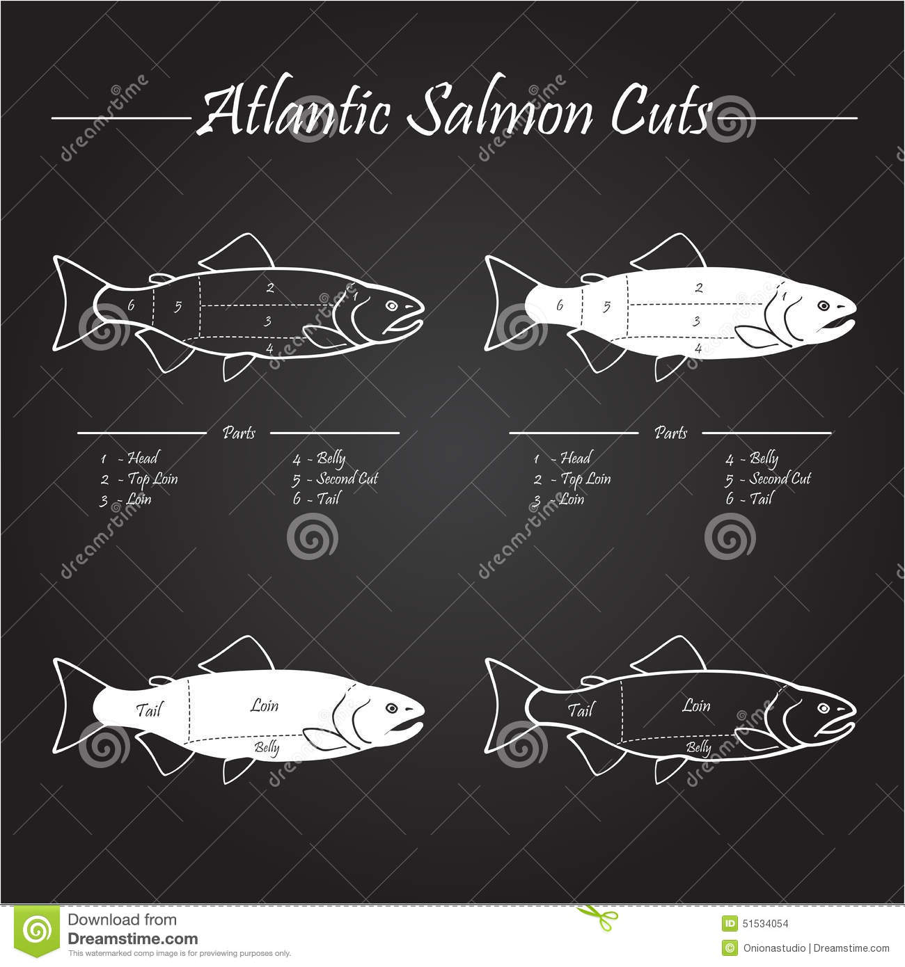 Atlantic Salmon Cuts Diagram Stock Vector