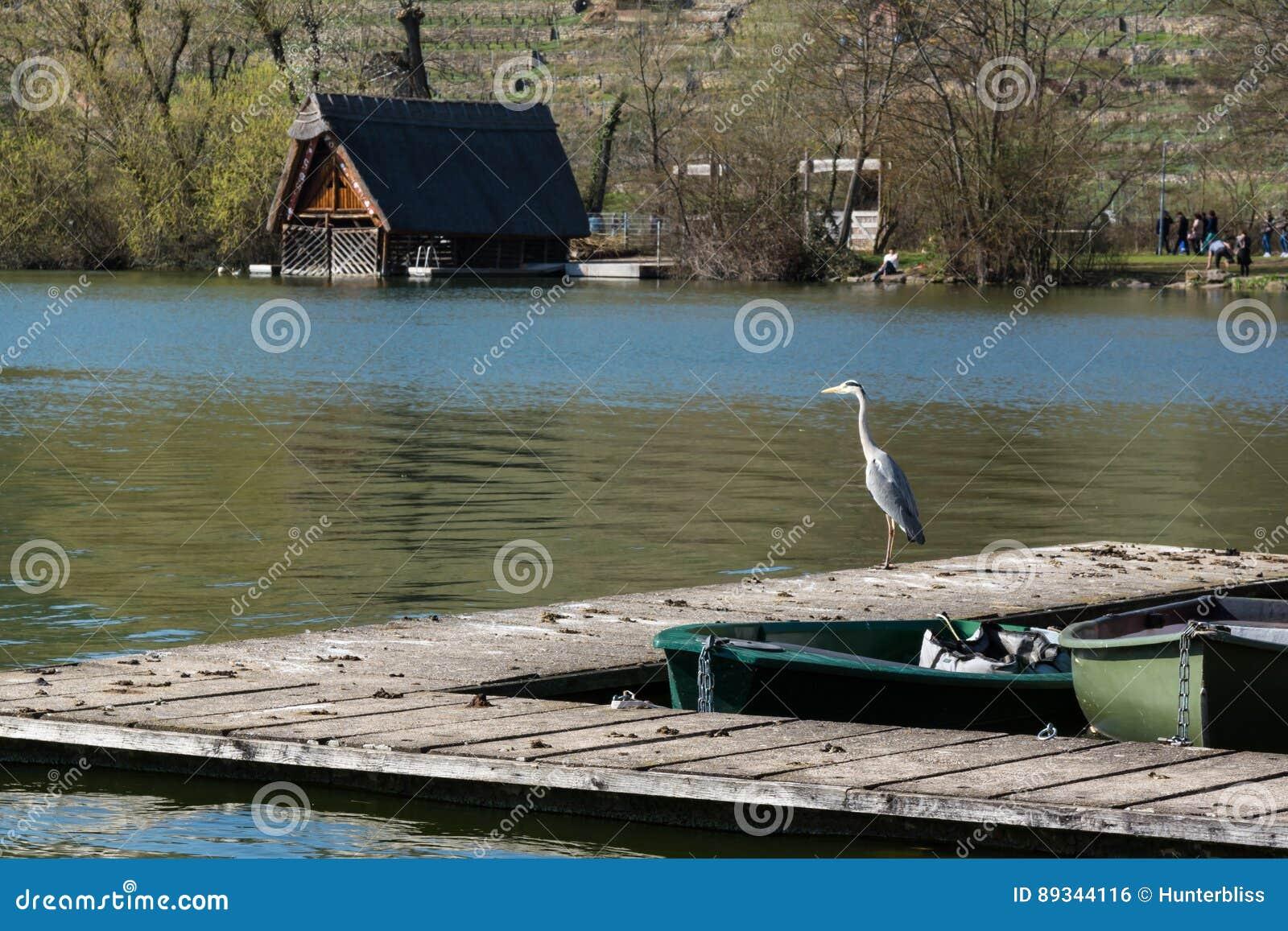 Atmosfera Envi de Sunny Lake Landscape Beautiful Idyllic do barco da doca