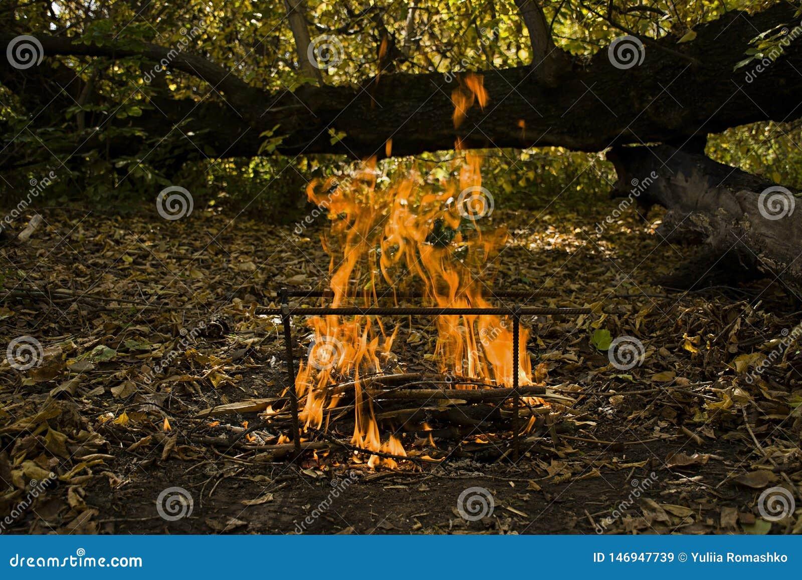 Atmosferyczny płomień pożarniczym zbliżeniem target39_1_ leisure plenerowy lunchu odtwarzanie Piękny pomarańcze ogień z dymem z k