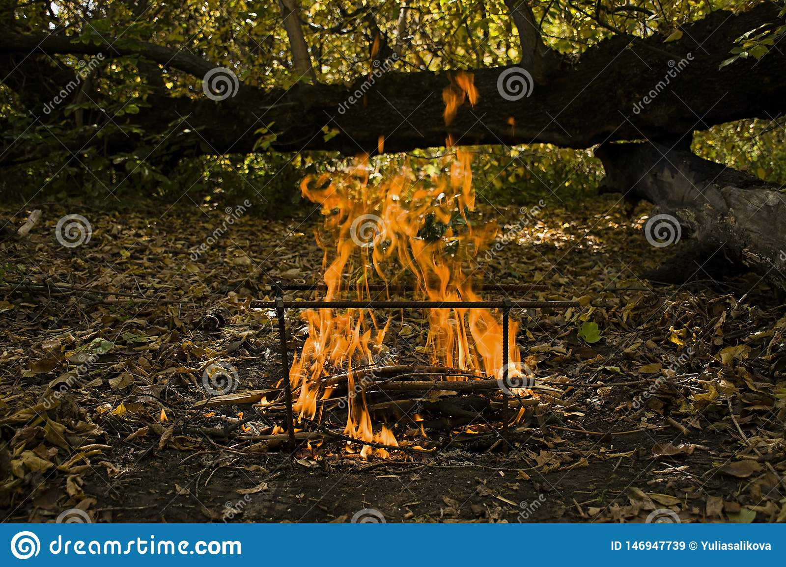 Atmospheric flame by the fire closeup. Camping. Leisure. Outdoor recreation. Beautiful orange fire with smoke with copy space