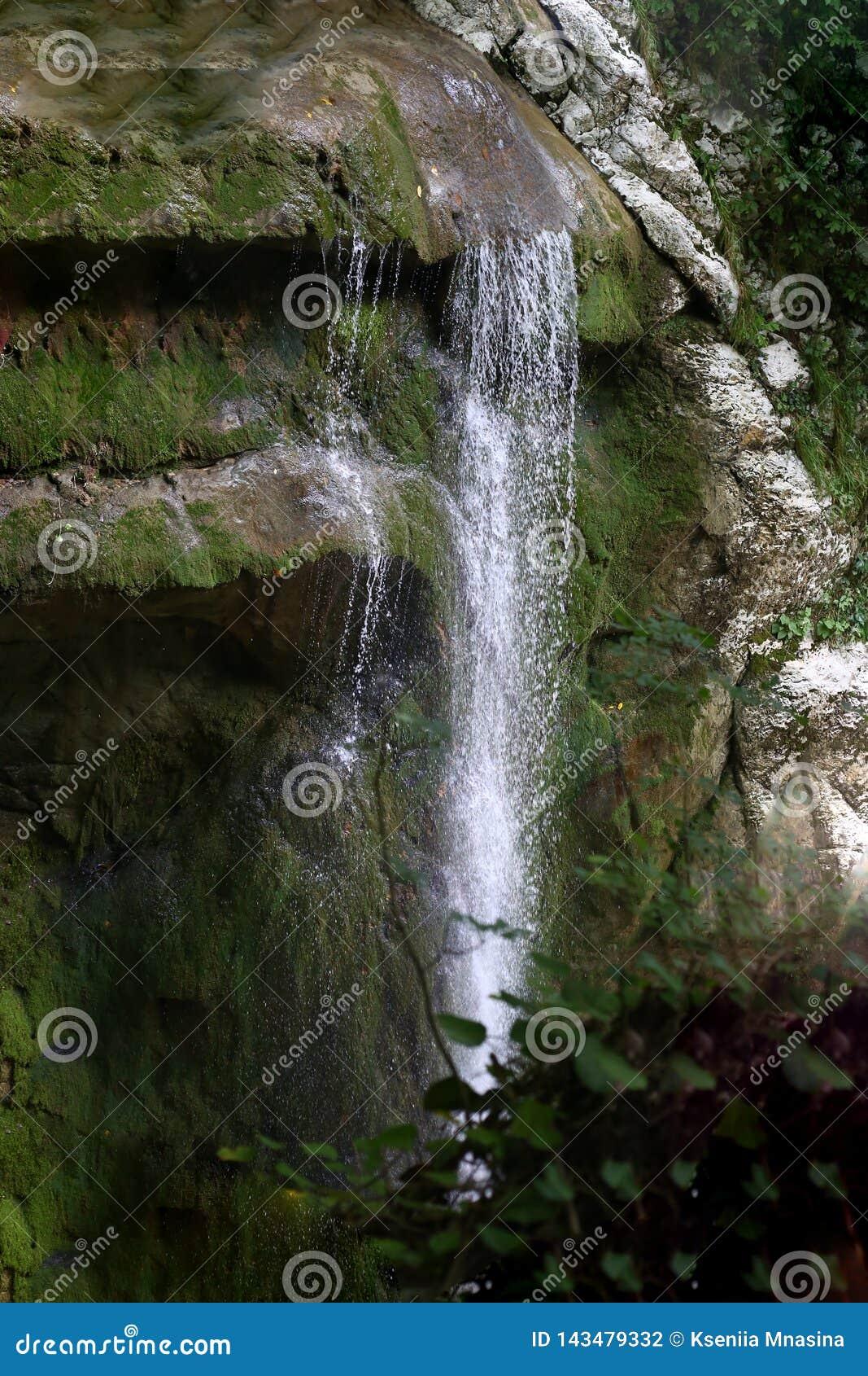 Atr?s das ?rvores voc? pode ver a cachoeira