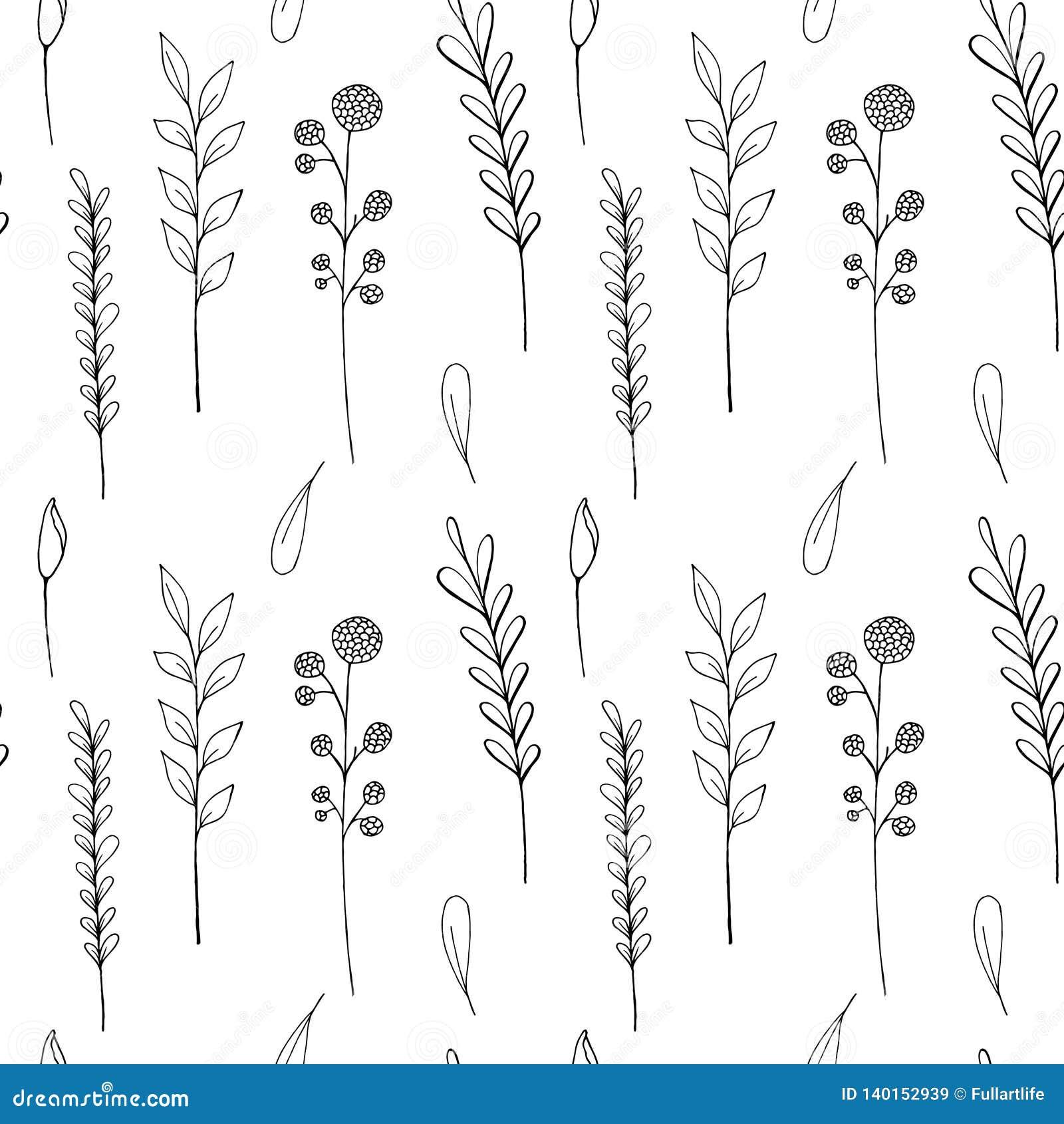 Atramentów wildflowers bezszwowy wzór Wręcza patroszonego maczka, łopian, banatka, trawa, dzika wzrastał, chamomile, chabrowy, bo