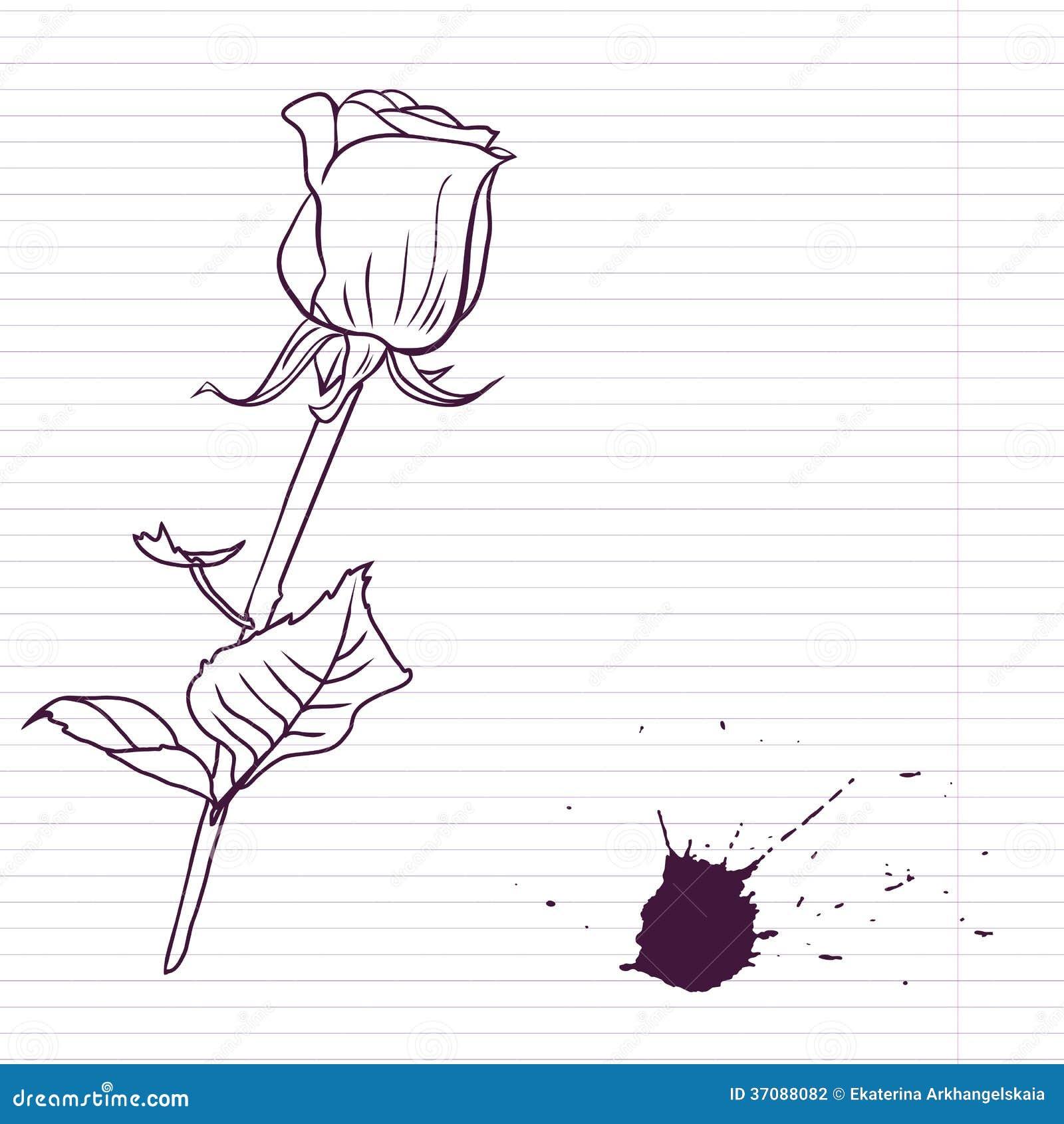 Download Atramentu rysunek wzrastał ilustracja wektor. Ilustracja złożonej z kardamon - 37088082