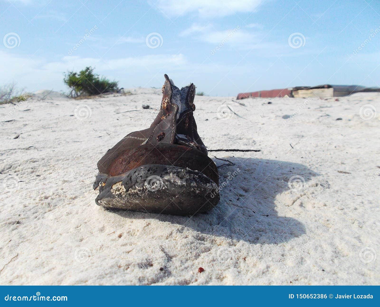 Att kroppen fanns på stranden, om det var precis kängan dem, kastade