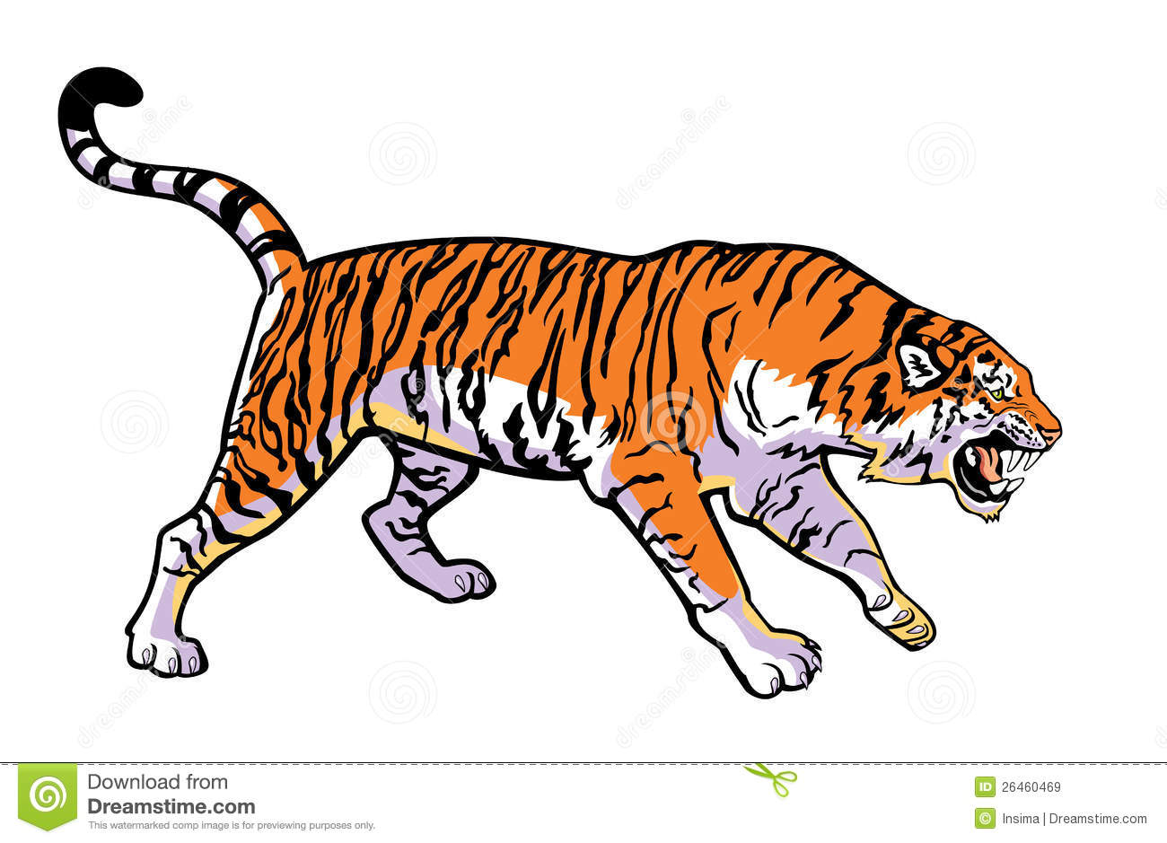 Attacking Tiger Royalty Free Stock Images Image 26460469
