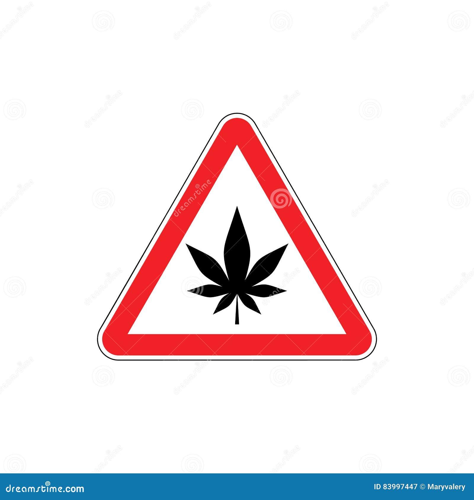 marijuana and the misconception on the dangers of marijuana Opponents of the legalization of marijuana argue that marijuana is a gateway drug, more dangerous than  another misconception is that marijuana is more dangerous.