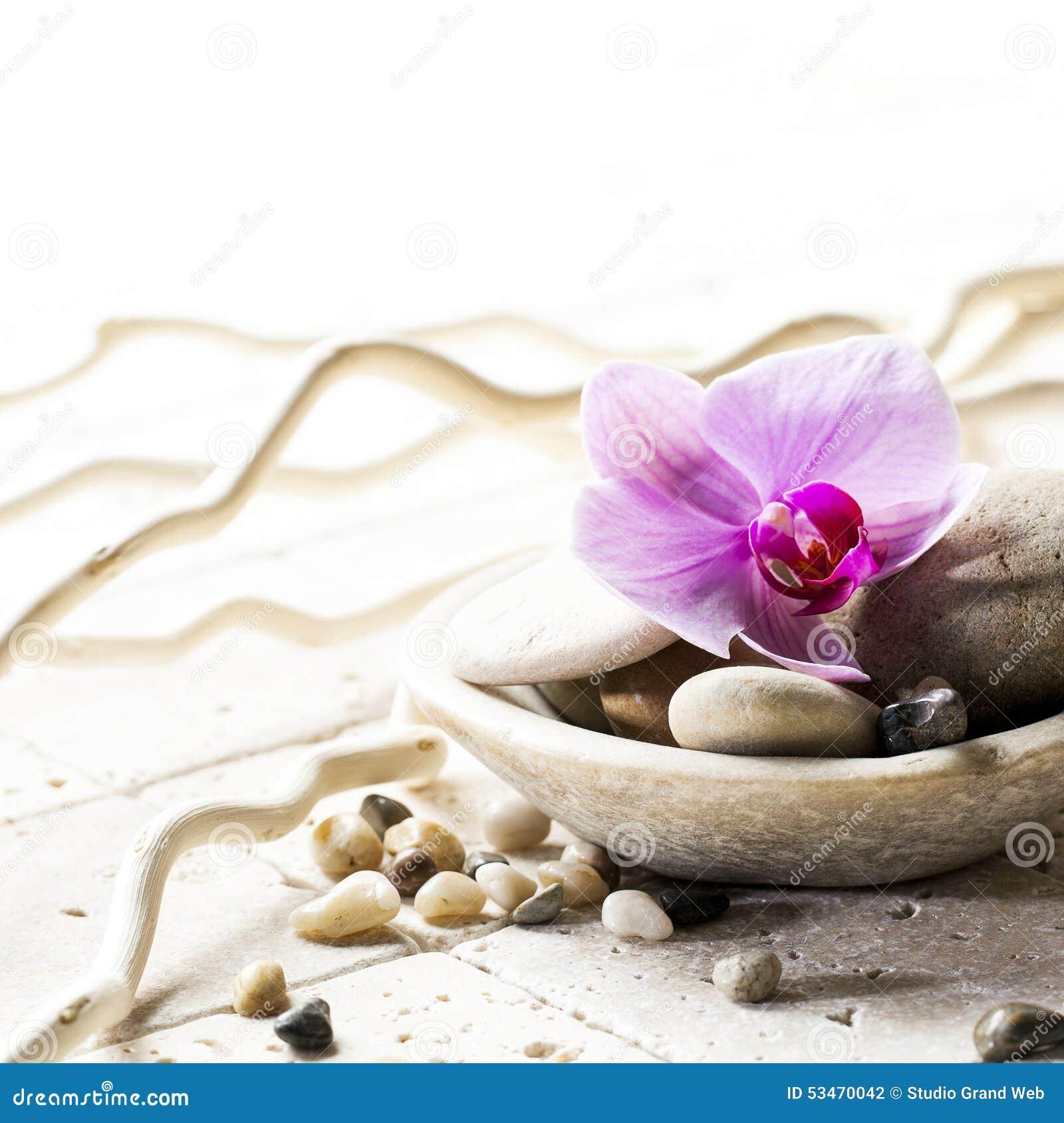 Attitude De Zen Avec La Tasse Minerale Des Pierres Et De La Fleur