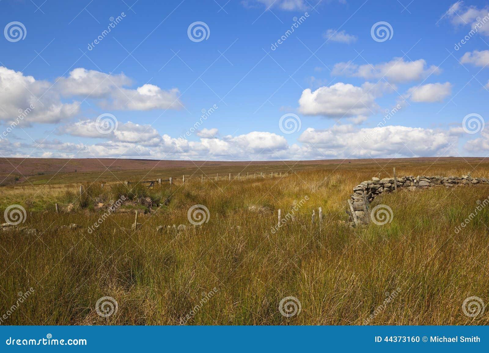 Attività e paesaggio dell erica