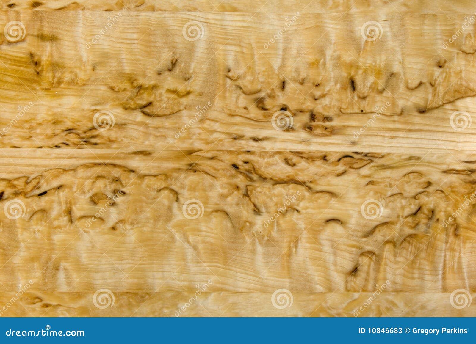 Birch Wood Grain ~ Attractive burled birch wood grain stock photos image