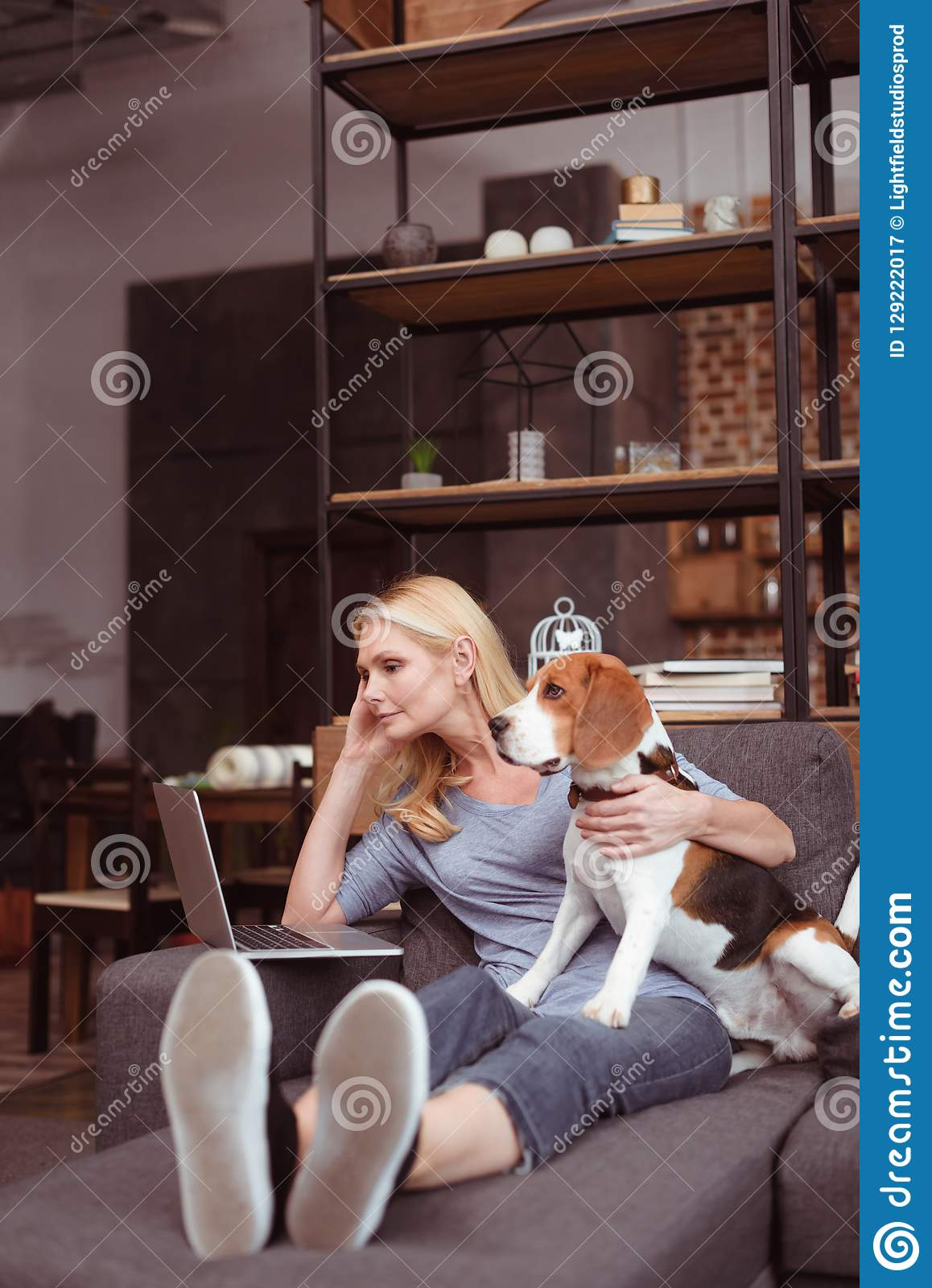 attractive middle aged woman using laptop while sitting with dog